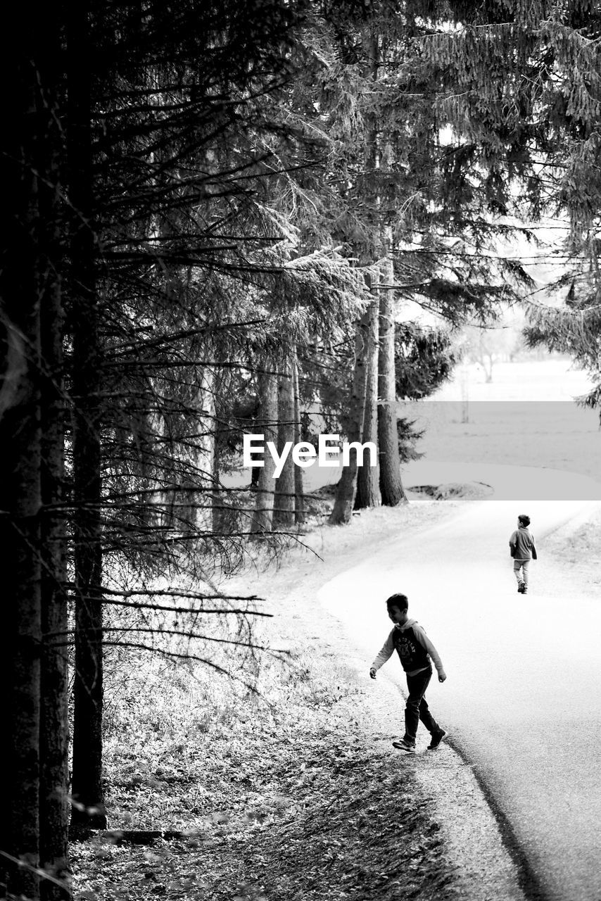 tree, real people, childhood, boys, two people, leisure activity, nature, forest, full length, walking, outdoors, tree trunk, father, elementary age, men, adventure, lifestyles, son, day, growth, togetherness, playing, winter, snow, vacations, beauty in nature, scenics, warm clothing, people