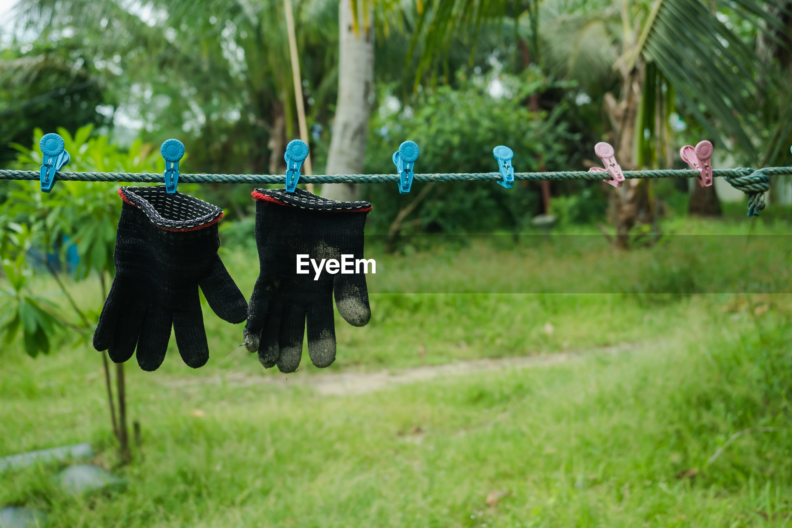 CLOTHES HANGING ON CLOTHESLINE BY TREES