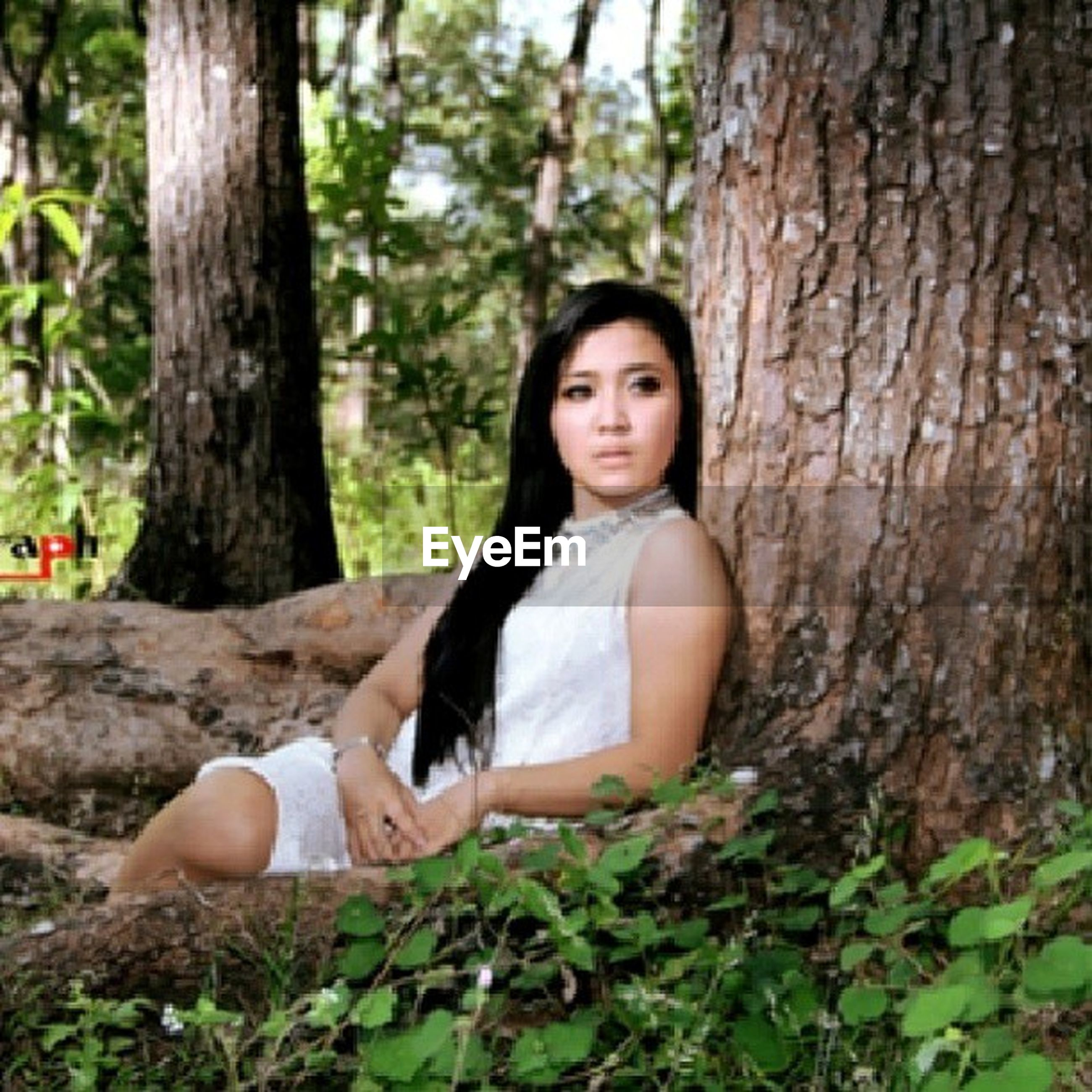 young adult, tree, young women, forest, person, portrait, lifestyles, leisure activity, looking at camera, tree trunk, casual clothing, front view, smiling, sitting, three quarter length, standing, happiness