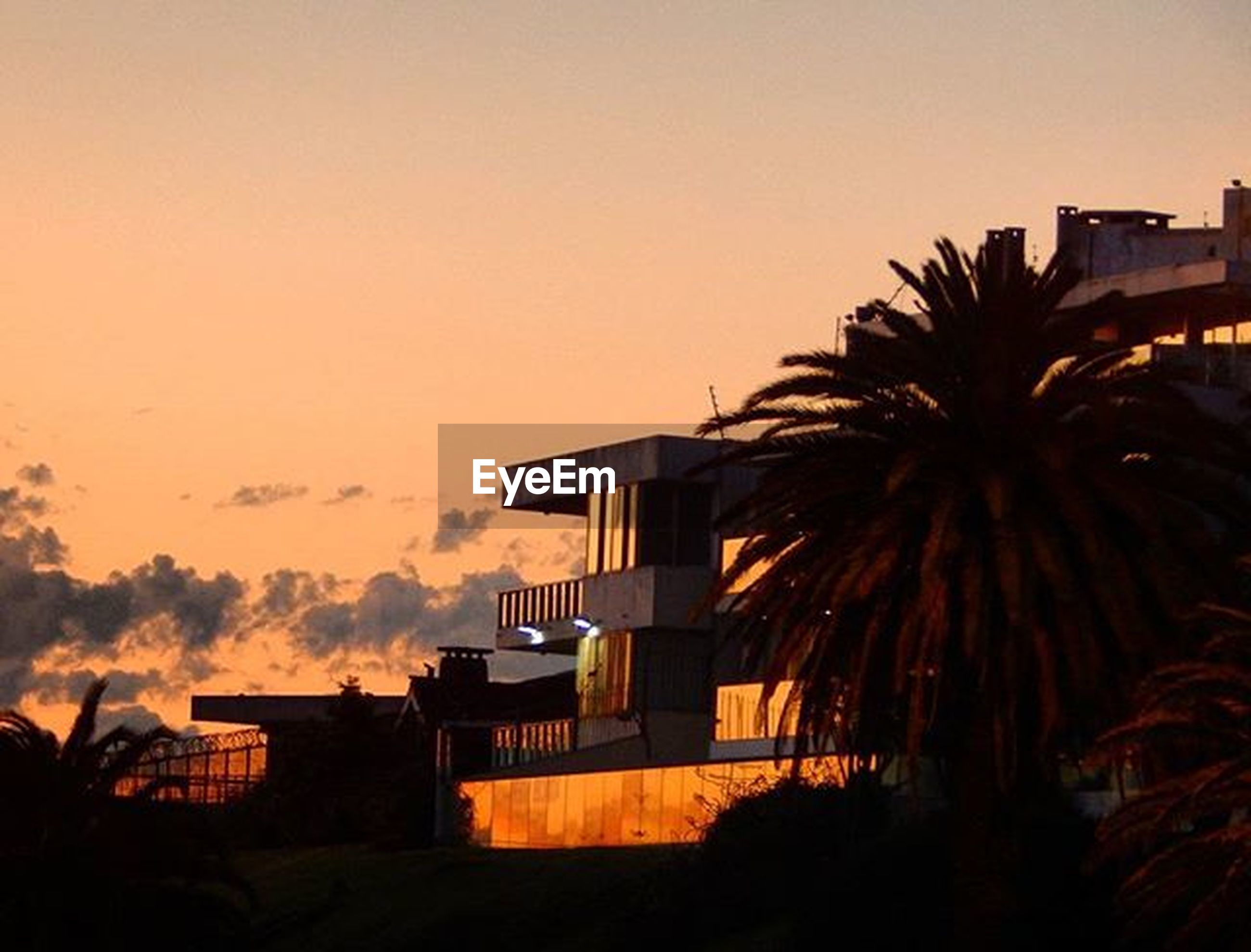 building exterior, architecture, built structure, sunset, palm tree, silhouette, city, sky, residential structure, residential building, house, building, copy space, clear sky, tree, dusk, low angle view, outdoors, no people, residential district