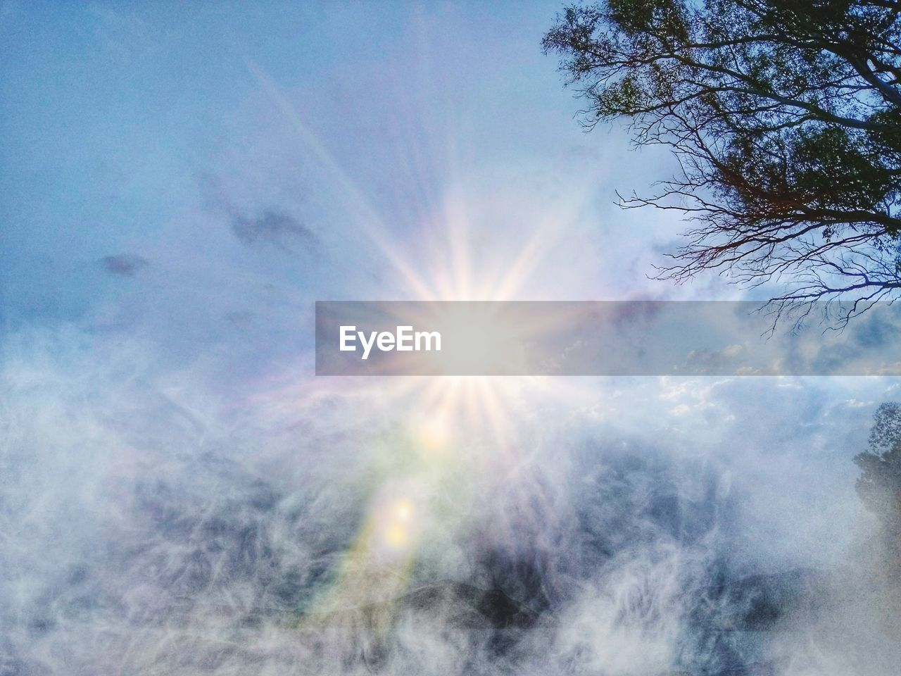sun, sunlight, sunbeam, lens flare, nature, sky, beauty in nature, outdoors, low angle view, no people, day, scenics, tree