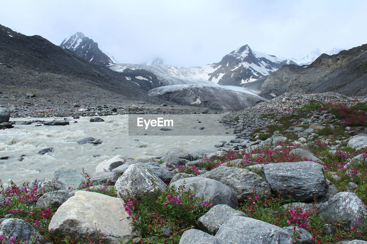 Alpine glacier with mountain peaks, river, stones and flowers