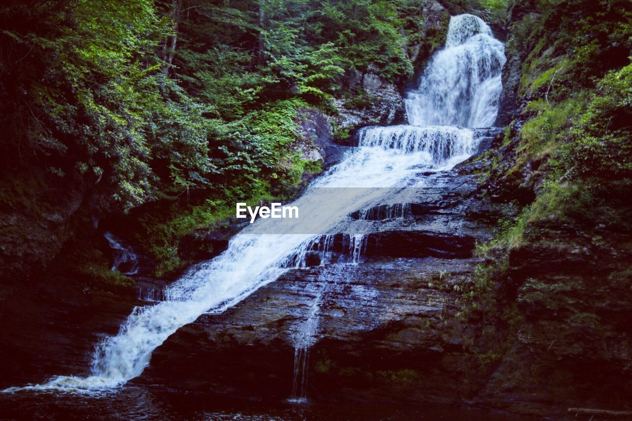 waterfall, water, motion, flowing water, long exposure, nature, forest, beauty in nature, outdoors, blurred motion, no people, scenics, tranquil scene, day, tree, power in nature, freshness