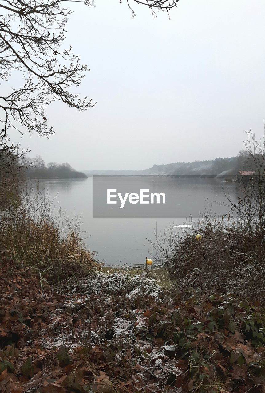 water, nature, lake, tranquility, tree, beauty in nature, tranquil scene, no people, scenics, outdoors, sky, day, grass, landscape, fog