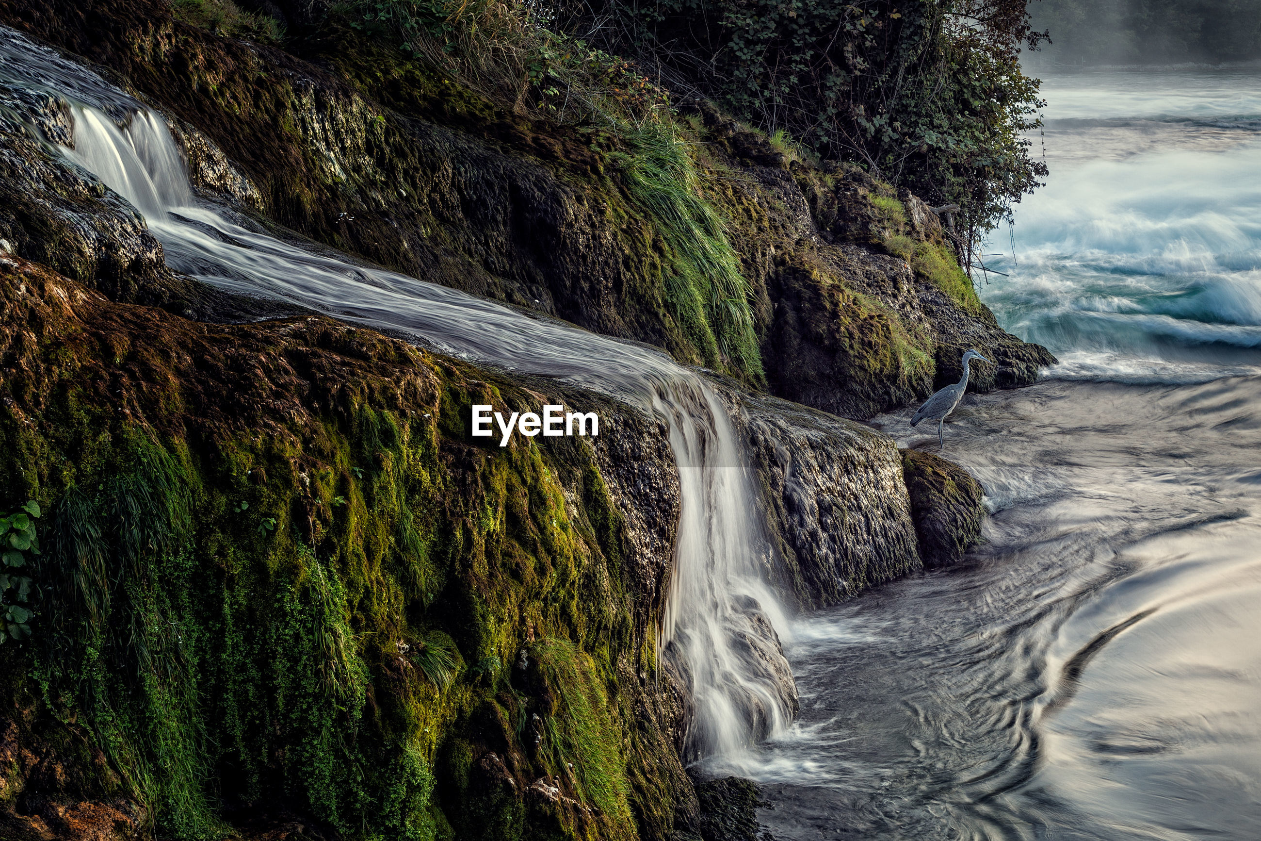SCENIC VIEW OF WATER FLOWING FROM ROCKS
