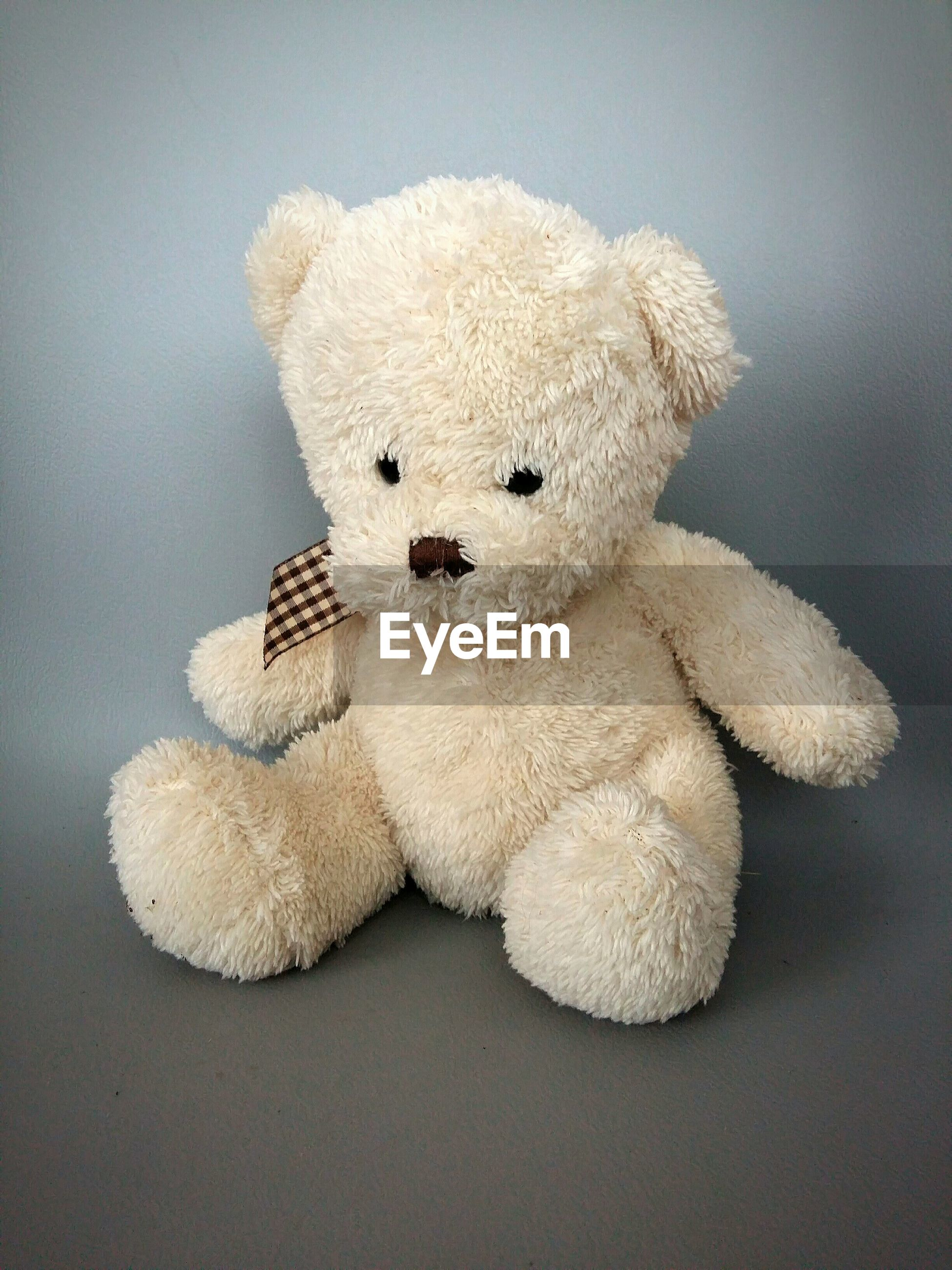 Close-up of stuffed toy against gray background