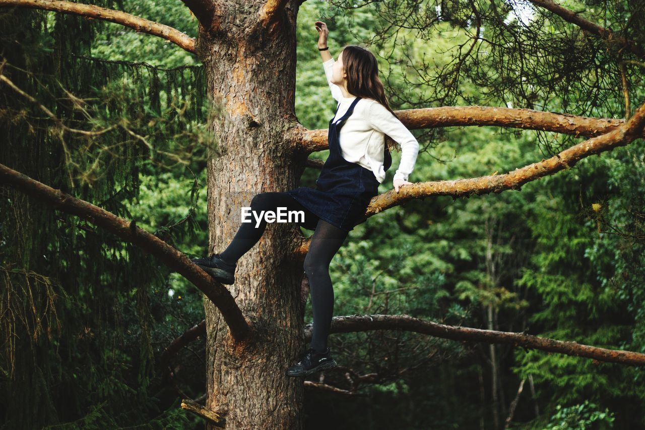 Full Length Of Young Woman Sitting On Tree Trunk In Forest