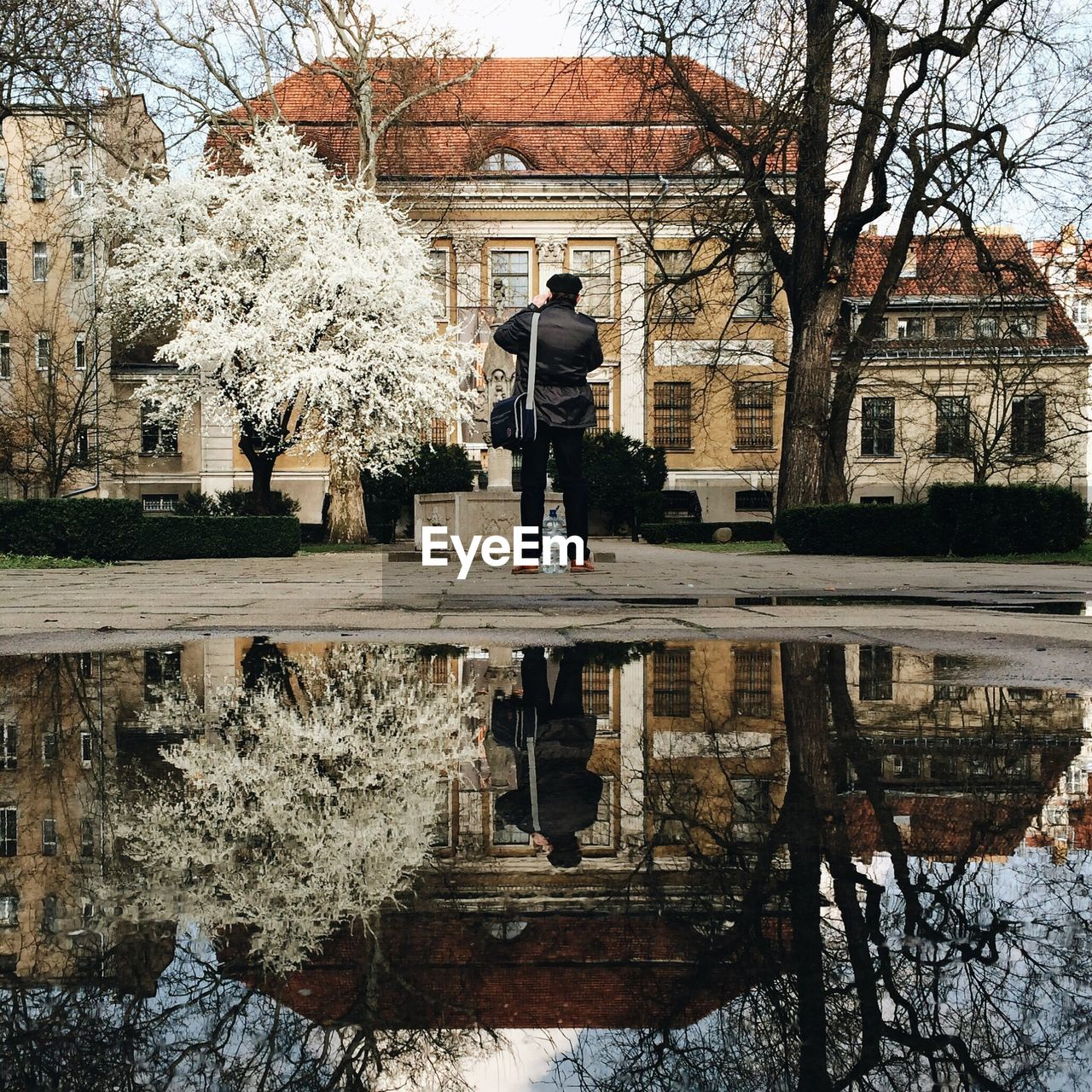Reflection of man and buildings with trees in puddle