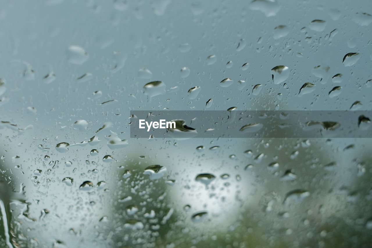 drop, wet, water, rain, window, raindrop, weather, rainy season, no people, backgrounds, close-up, full frame, indoors, focus on foreground, day, nature, freshness