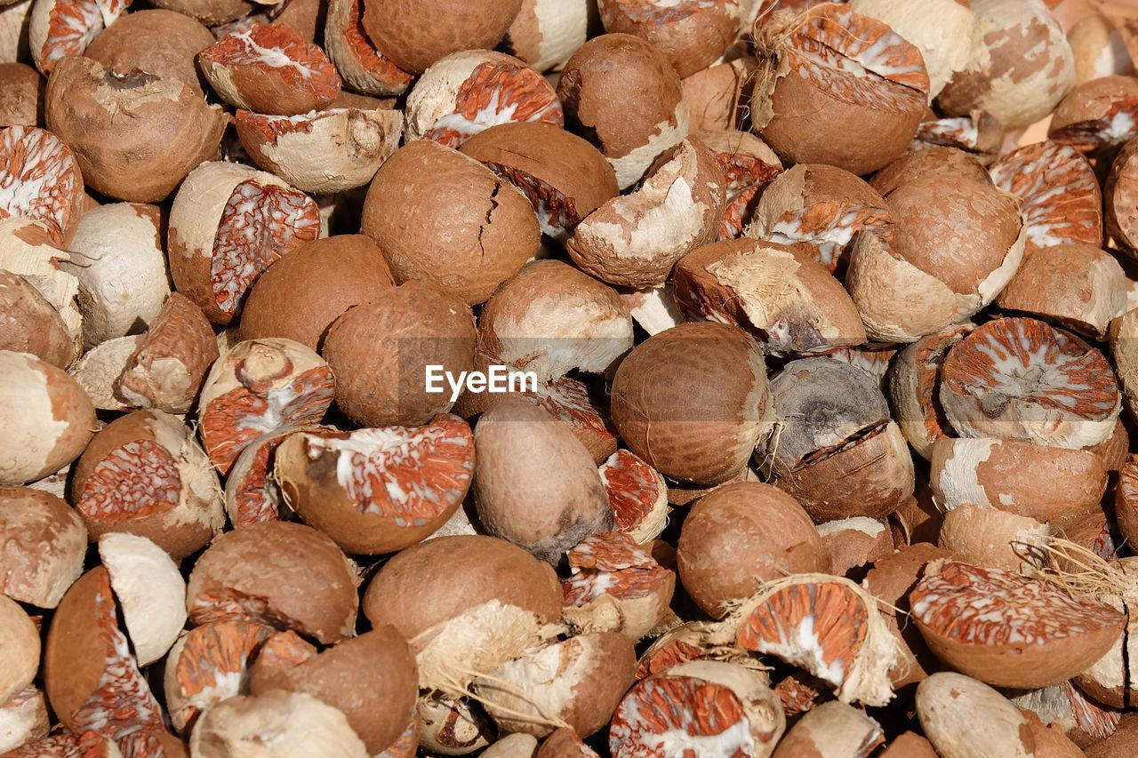 Full frame shot of betel nuts