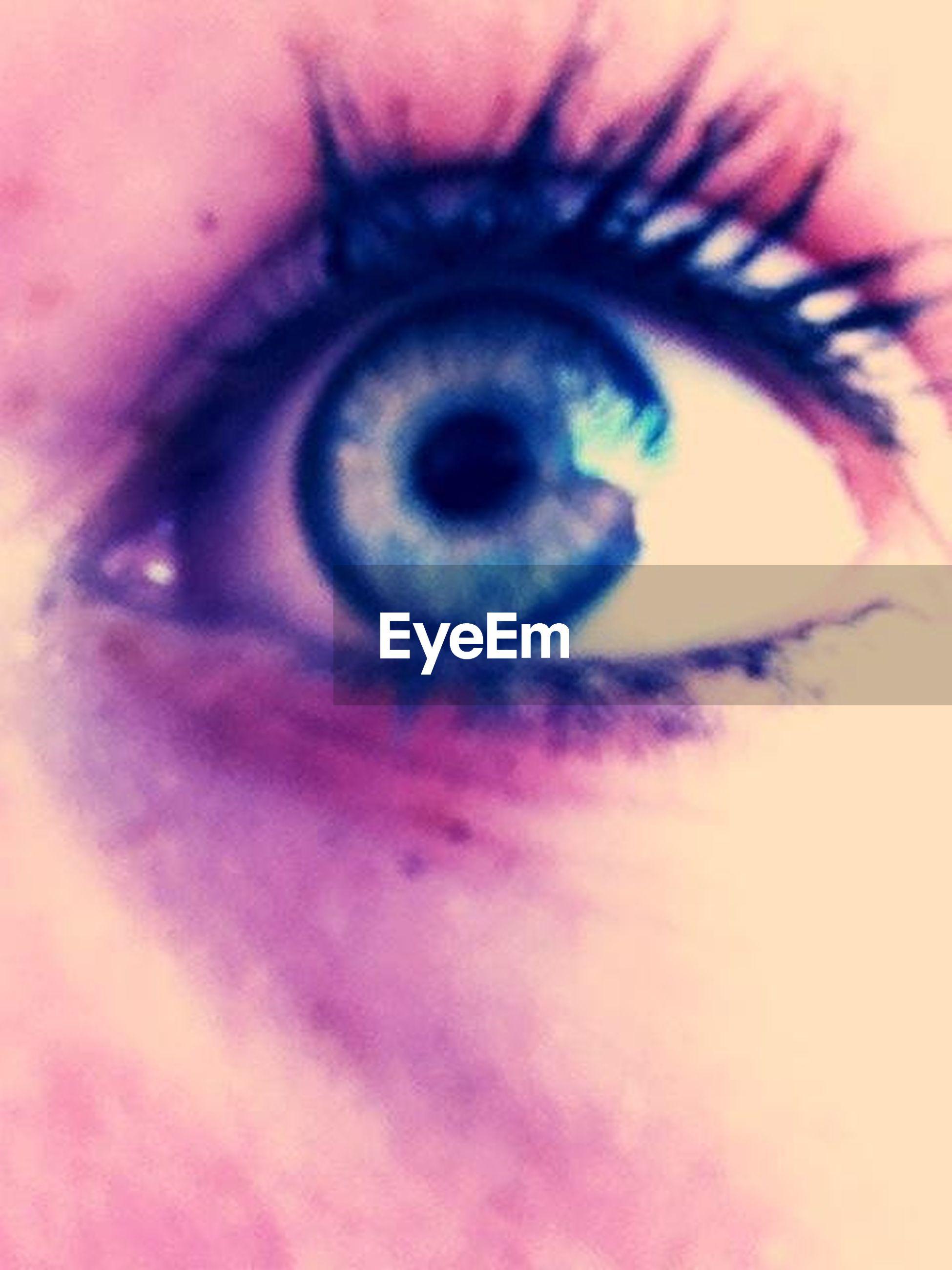 human eye, close-up, eyelash, eyesight, part of, looking at camera, portrait, extreme close-up, sensory perception, iris - eye, unrecognizable person, eyeball, indoors, human skin, human face, extreme close up, cropped