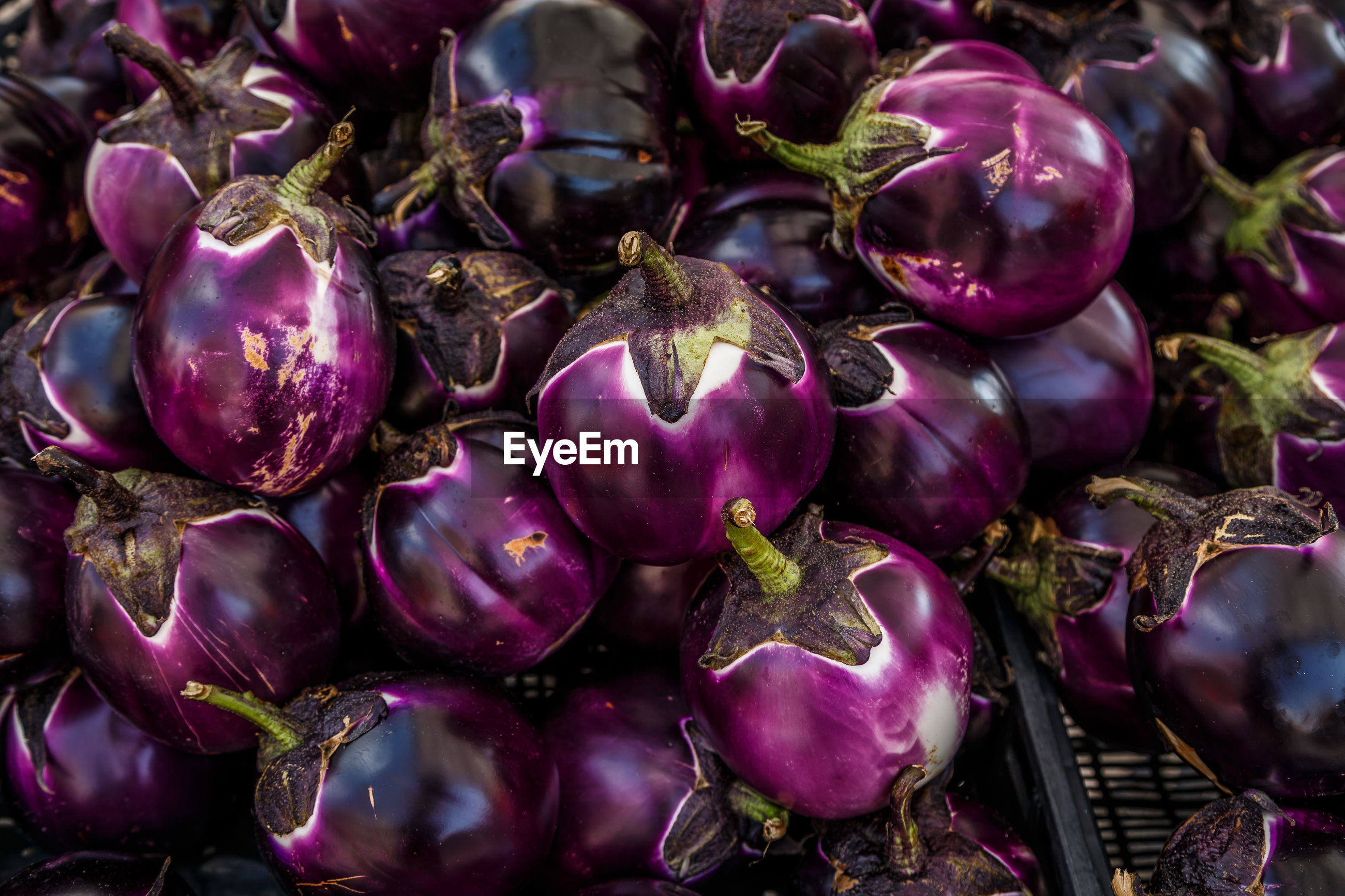 Full frame shot of eggplantd for sale at market stall