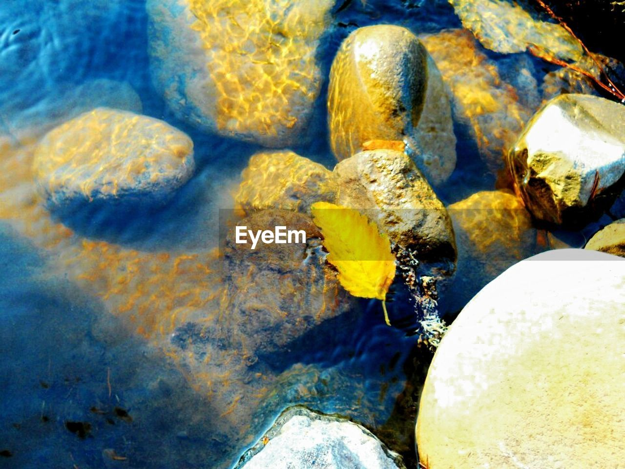 rock - object, water, no people, nature, close-up, outdoors, day, beauty in nature, sea
