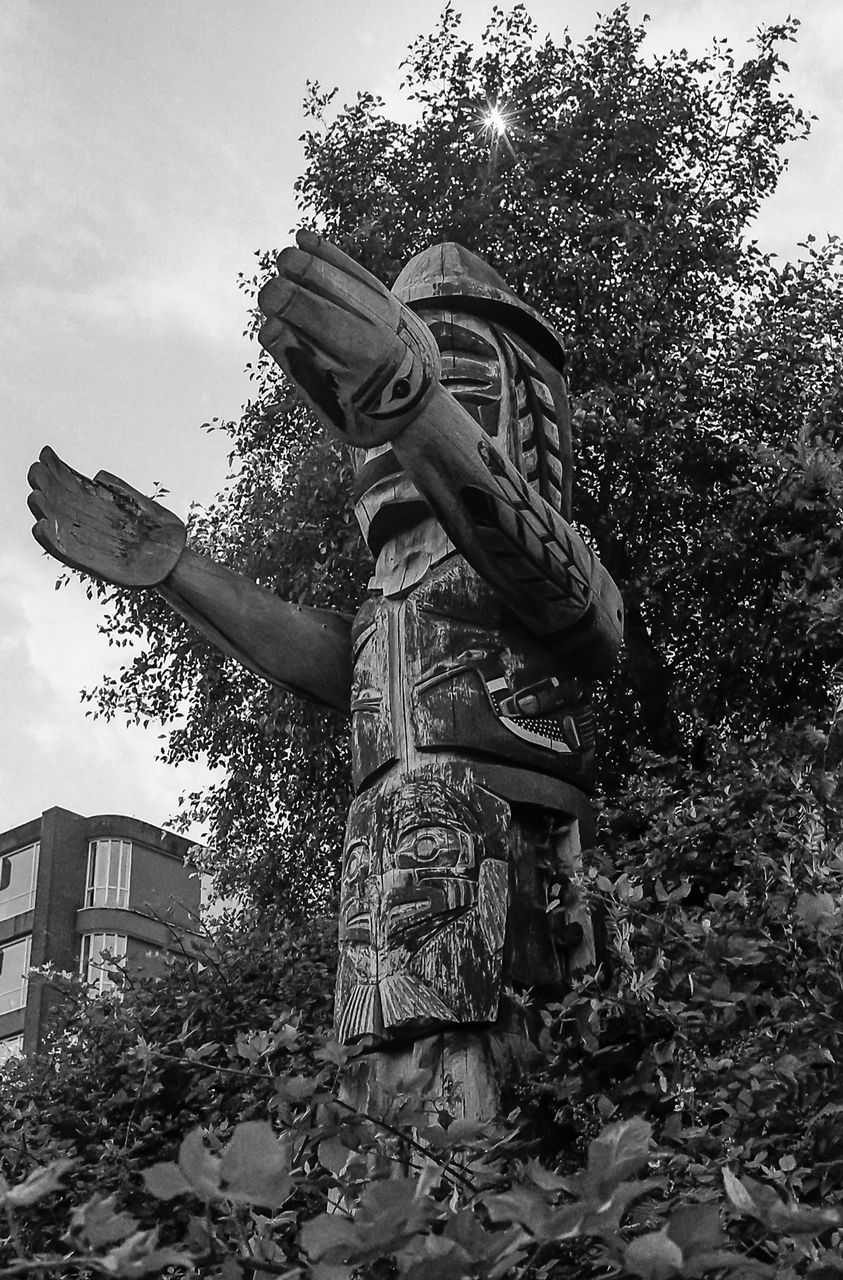 tree, low angle view, statue, sculpture, outdoors, day, sky, no people