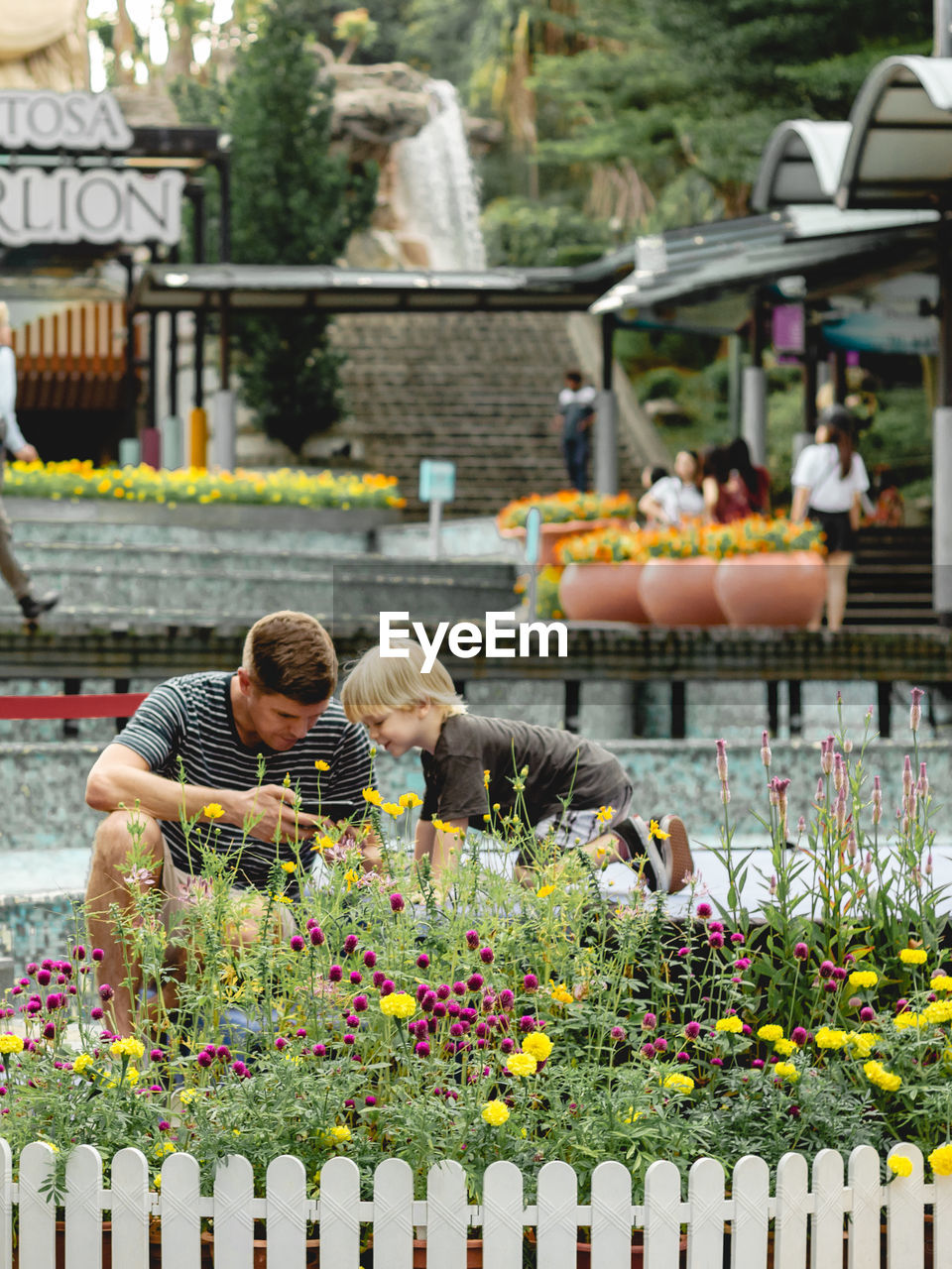 VIEW OF FLOWERING PLANTS AT WATER