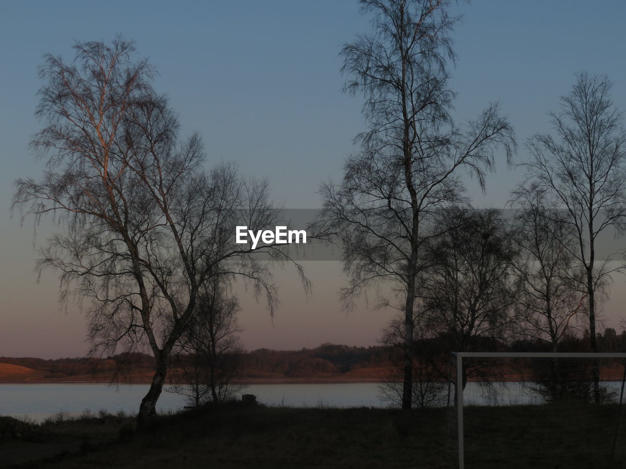 tree, nature, sky, bare tree, water, beauty in nature, tranquility, lake, sunset, no people, outdoors, scenics, day