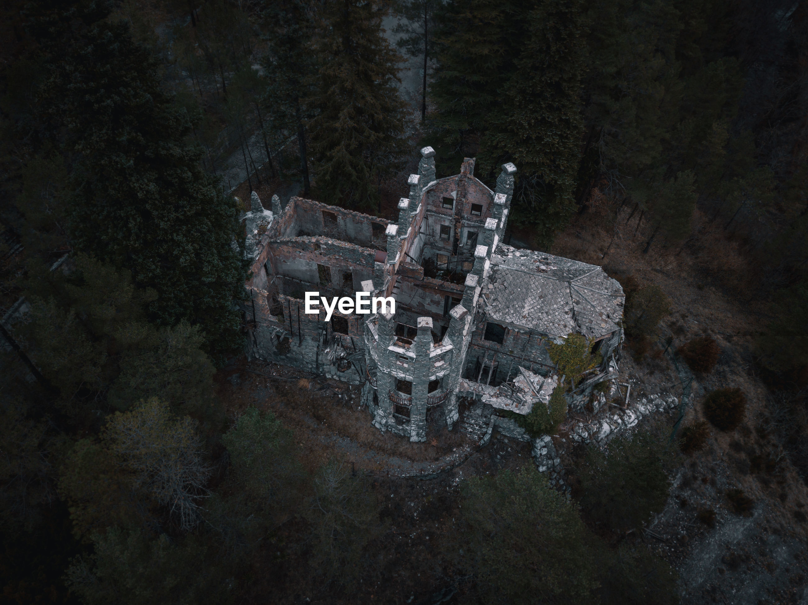 HIGH ANGLE VIEW OF OLD BUILDING IN FOREST