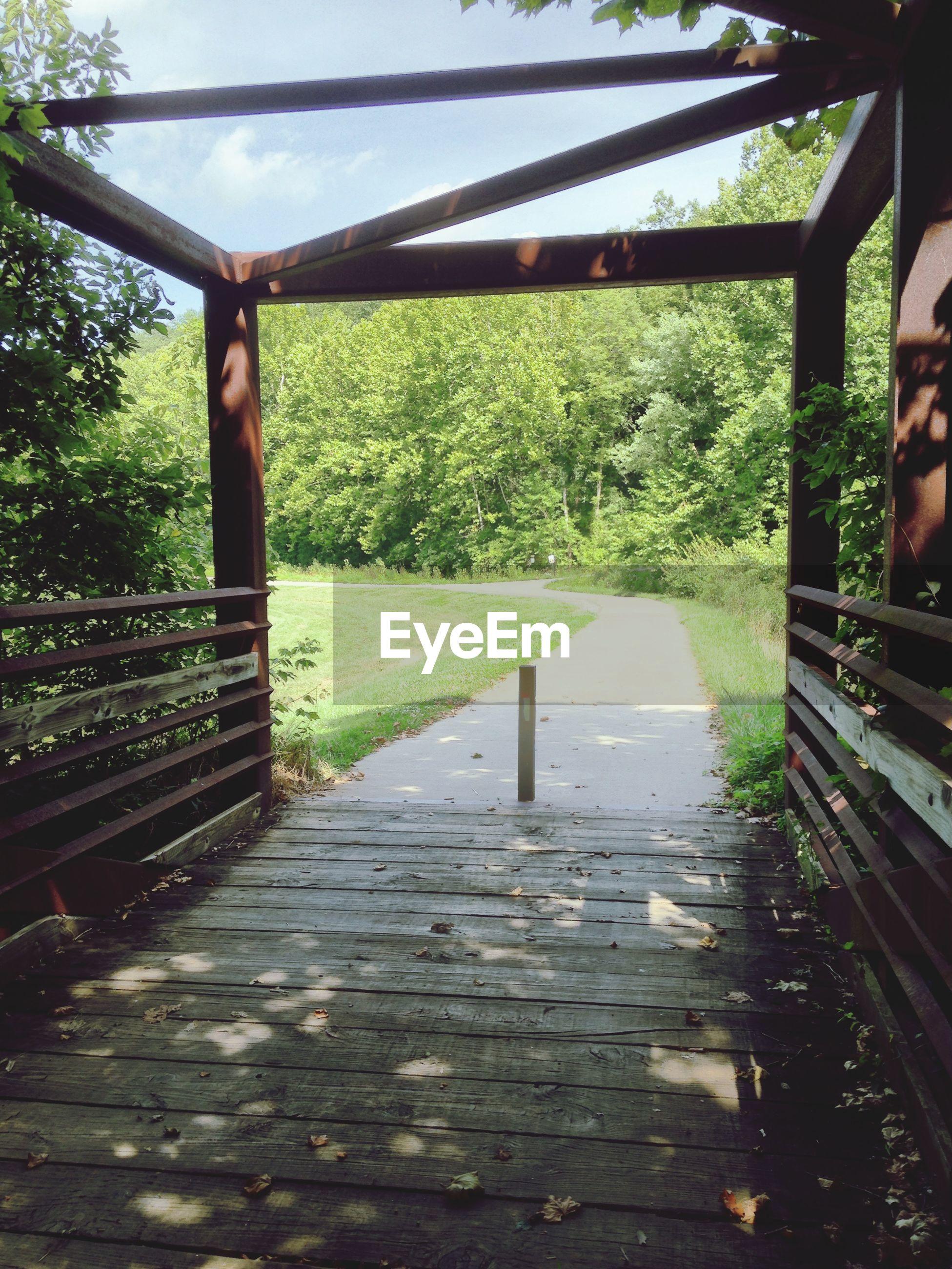 Bridge by walkway against trees