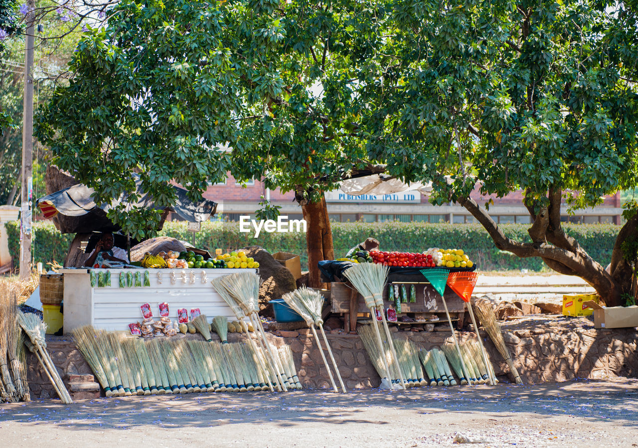 Market Stall By Trees