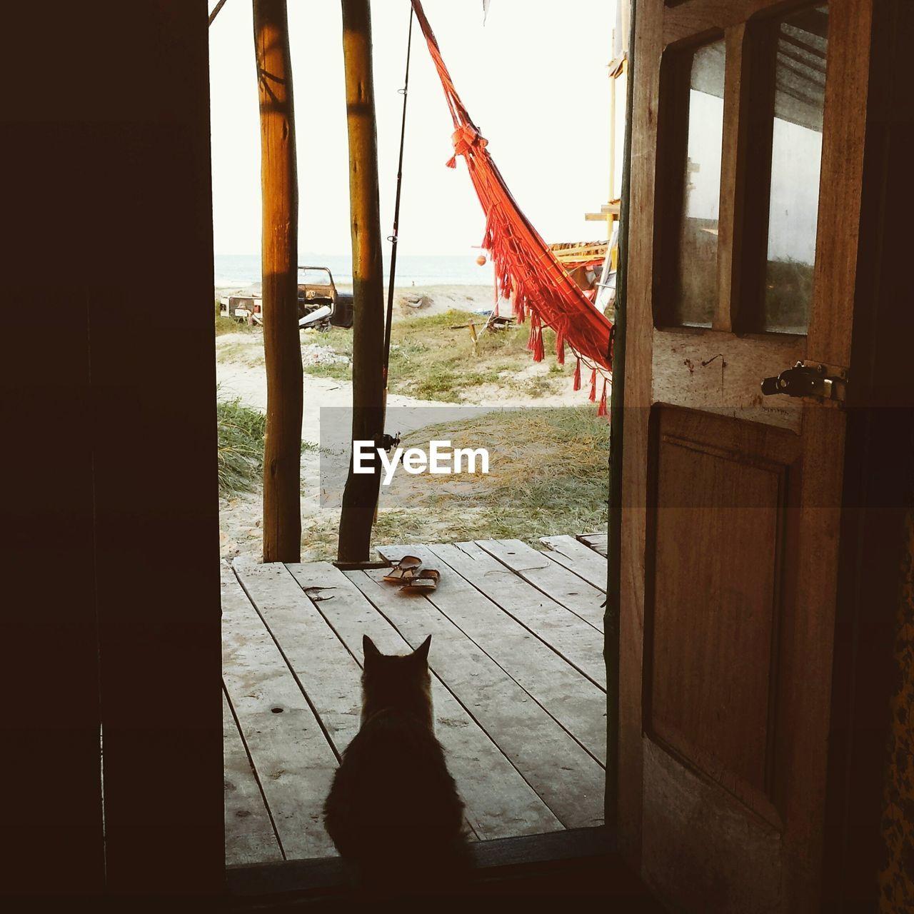 Cat sitting on door at beach