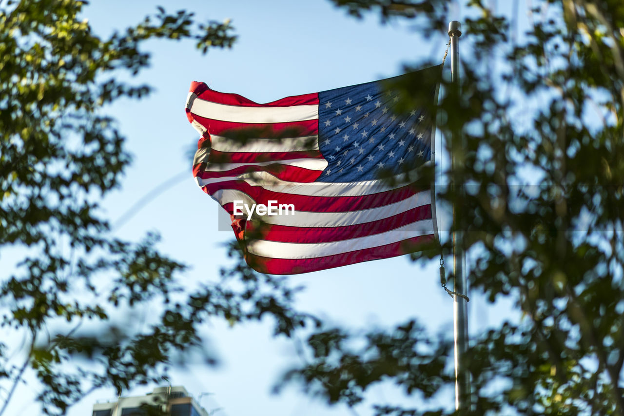 Low Angle View Of American Flag With Trees In Foreground