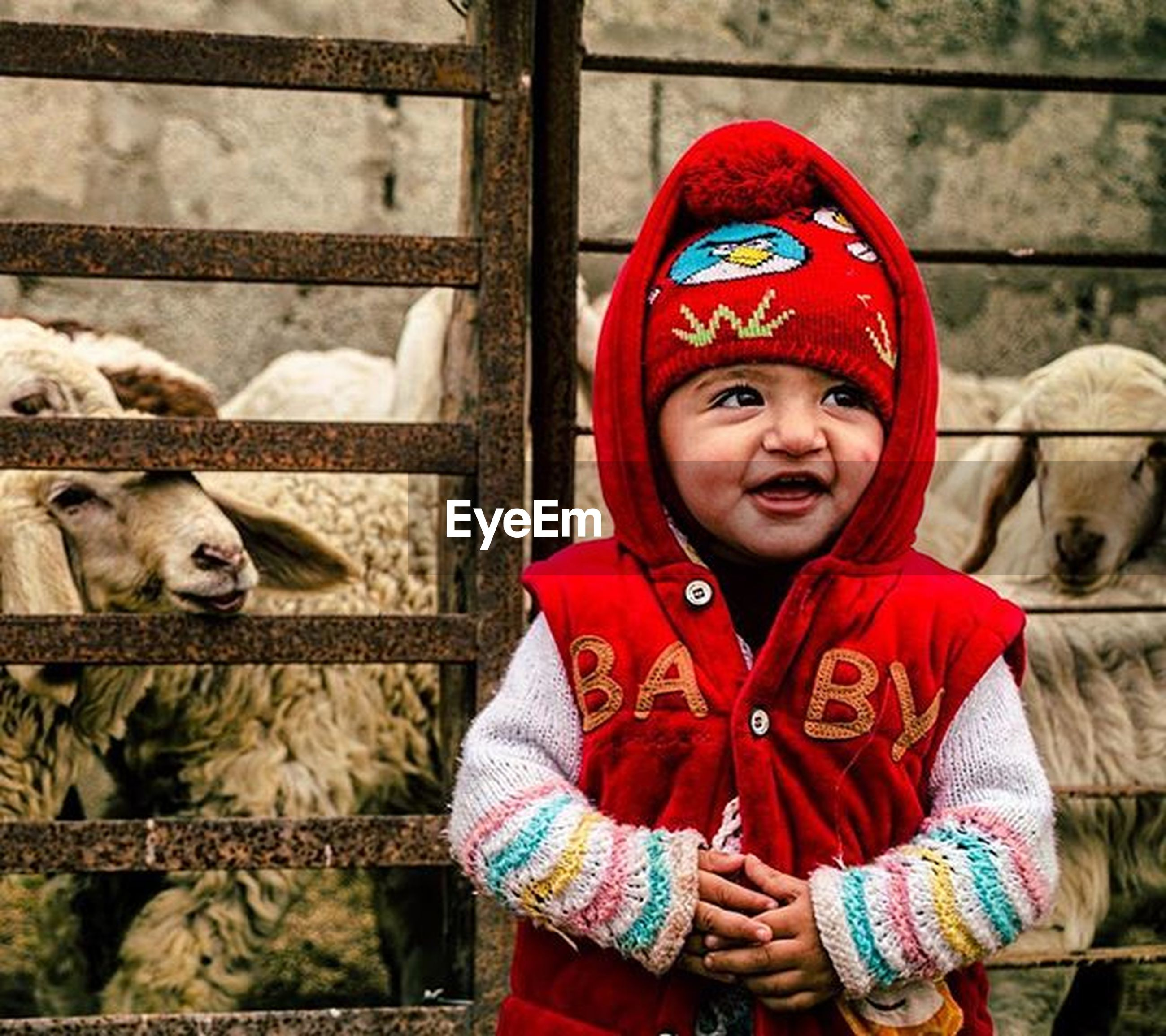 portrait, looking at camera, animal themes, front view, smiling, domestic animals, mammal, pets, two animals, togetherness, person, happiness, monkey, standing, day, close-up, focus on foreground, red, one animal, cute