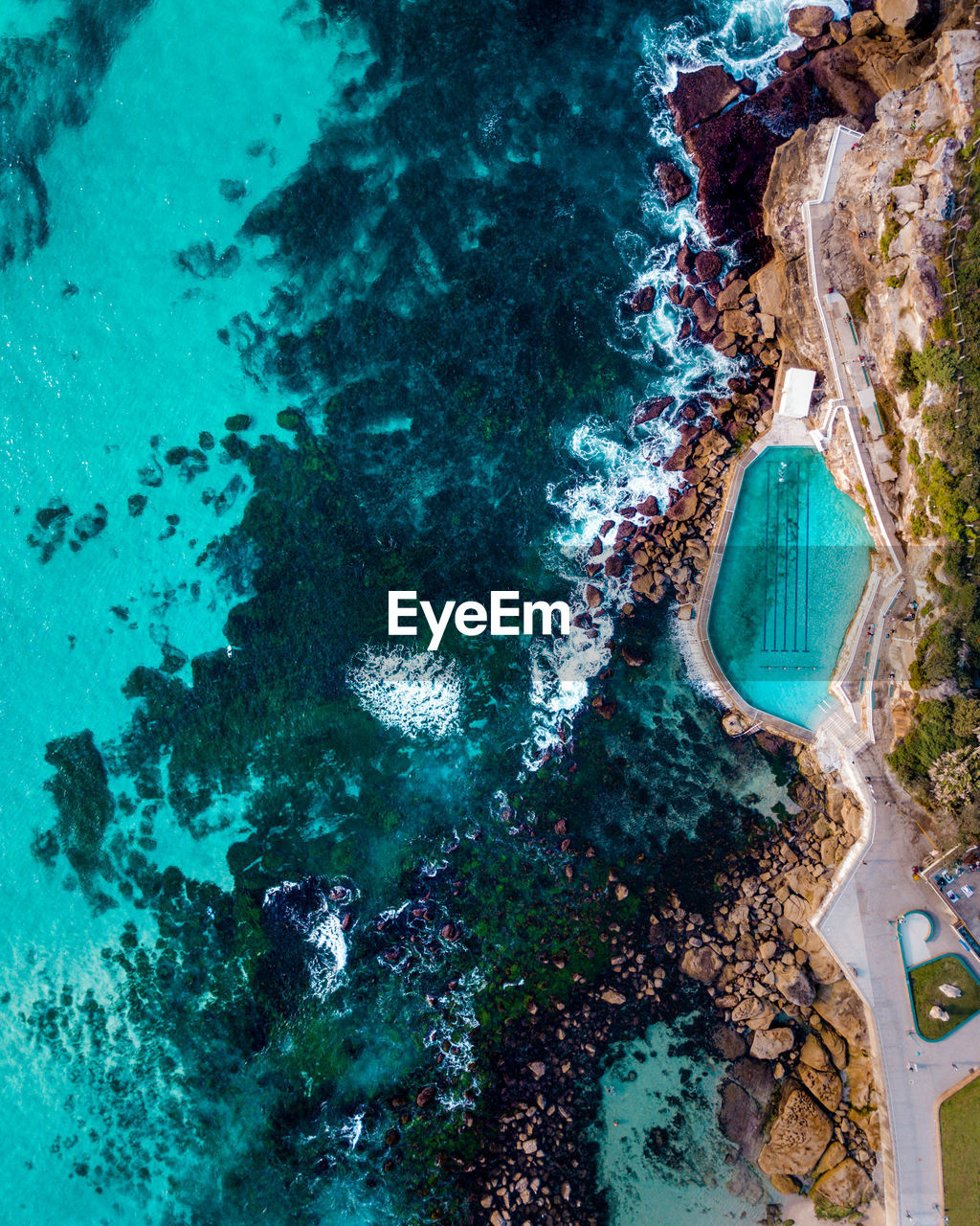 water, sea, nature, no people, high angle view, aerial view, day, underwater, rock, outdoors, beauty in nature, scenics - nature, land, tranquility, solid, tranquil scene, animal themes, animal, beach