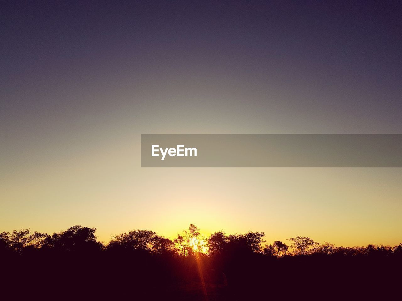 sky, tranquility, beauty in nature, tranquil scene, tree, scenics - nature, silhouette, plant, sunset, no people, nature, copy space, clear sky, sunlight, environment, outdoors, landscape, idyllic, orange color, land