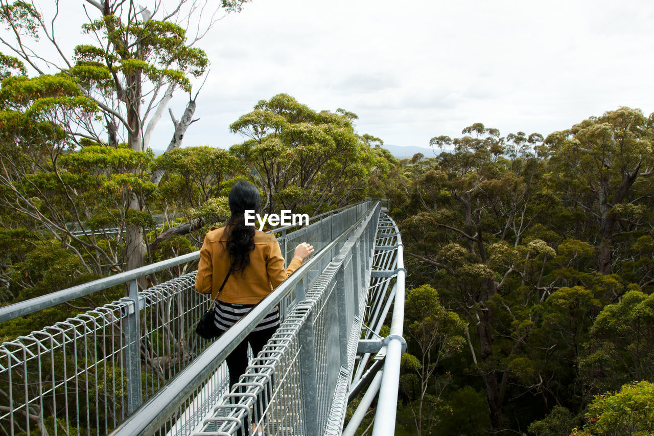 Rear View Of Woman On Footbridge In Forest