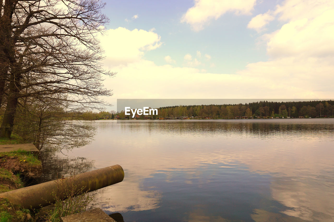 water, sky, tree, cloud - sky, plant, scenics - nature, tranquility, beauty in nature, tranquil scene, lake, nature, no people, reflection, outdoors, day, non-urban scene, waterfront, idyllic