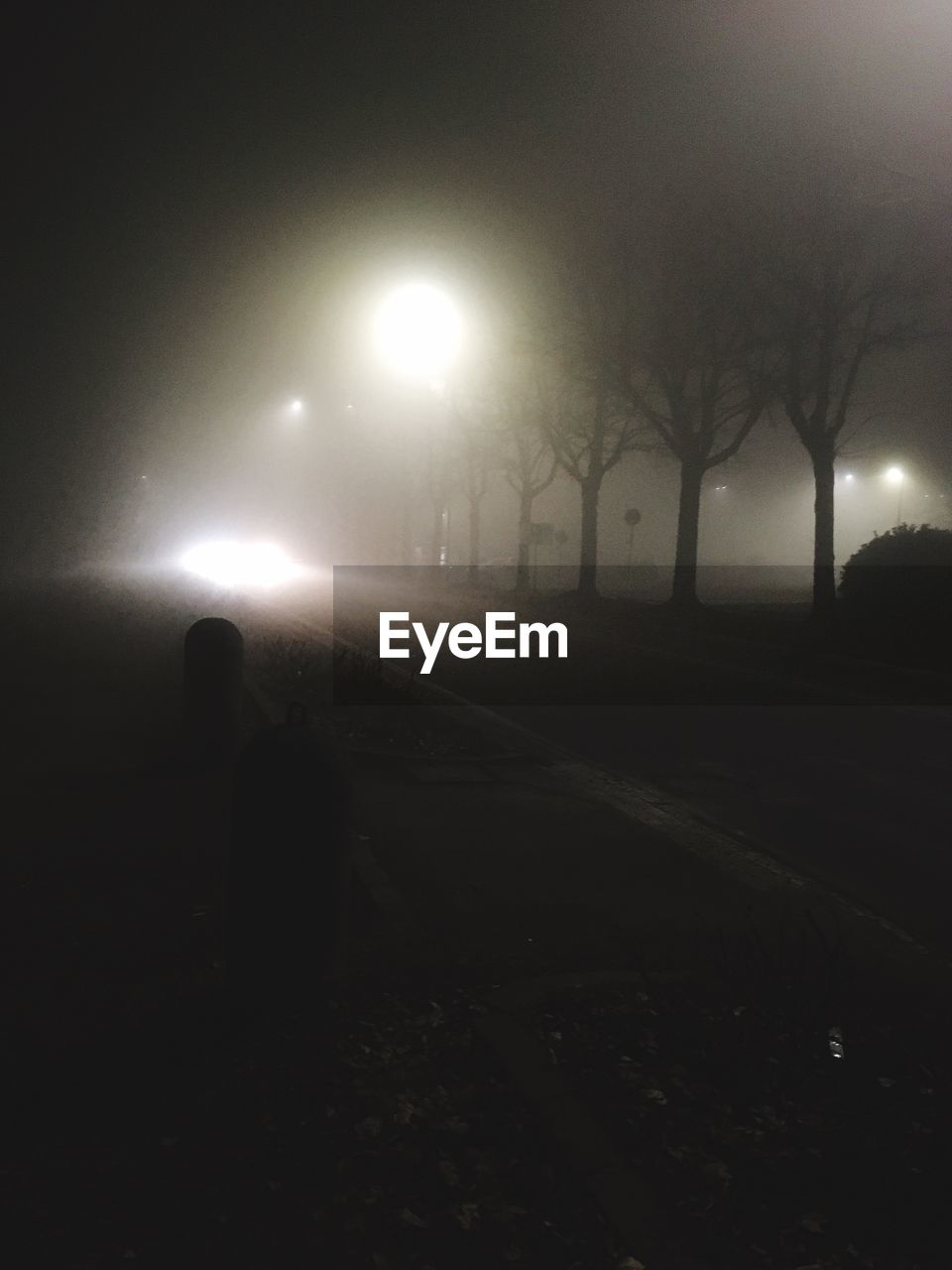 illuminated, silhouette, night, fog, nature, lighting equipment, street, tree, street light, sky, unrecognizable person, real people, dark, direction, transportation, outdoors, plant, spooky, the way forward, road, light