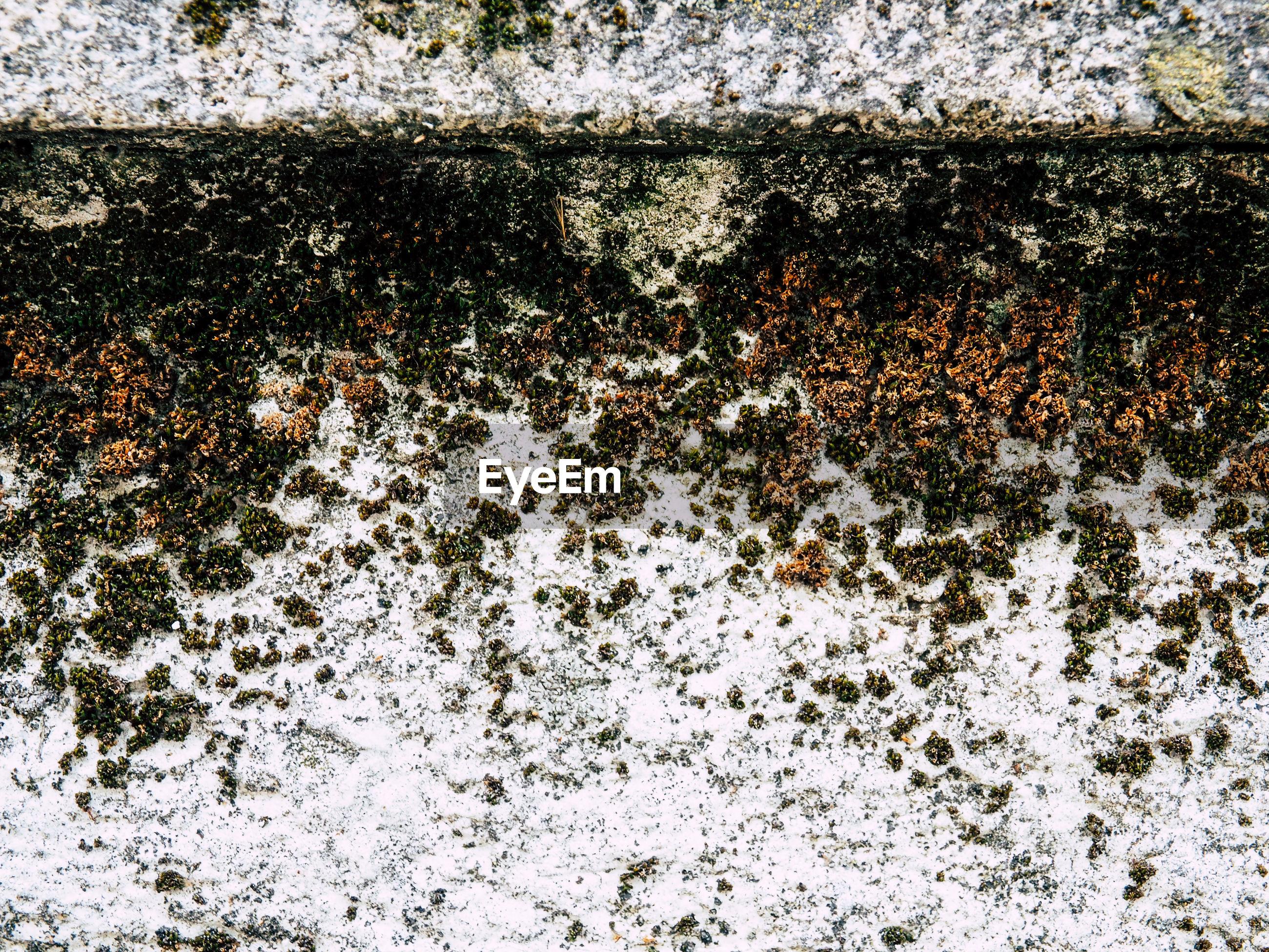 Full frame shot of deteriorating wall