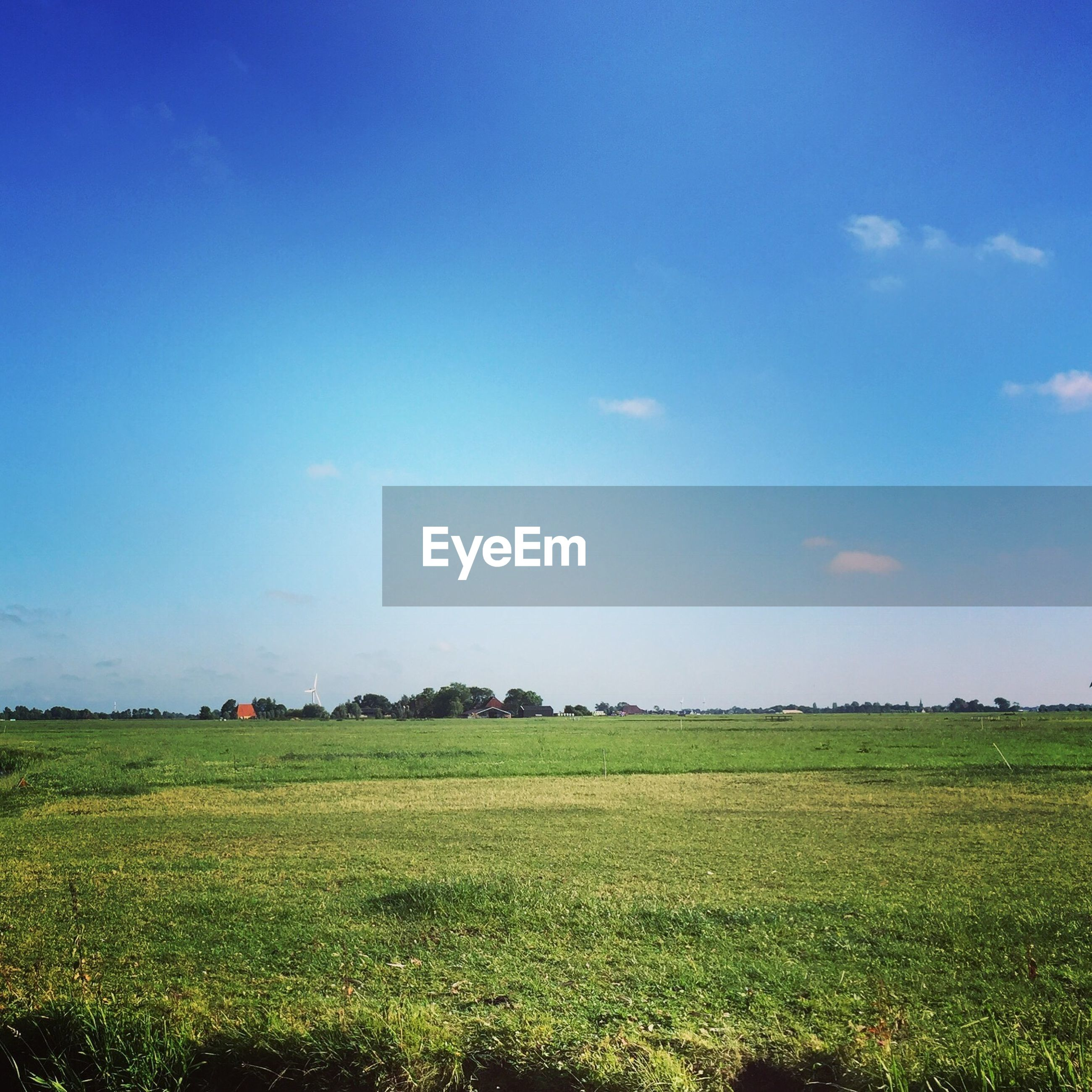 SCENIC VIEW OF GREEN FIELD AGAINST BLUE SKY