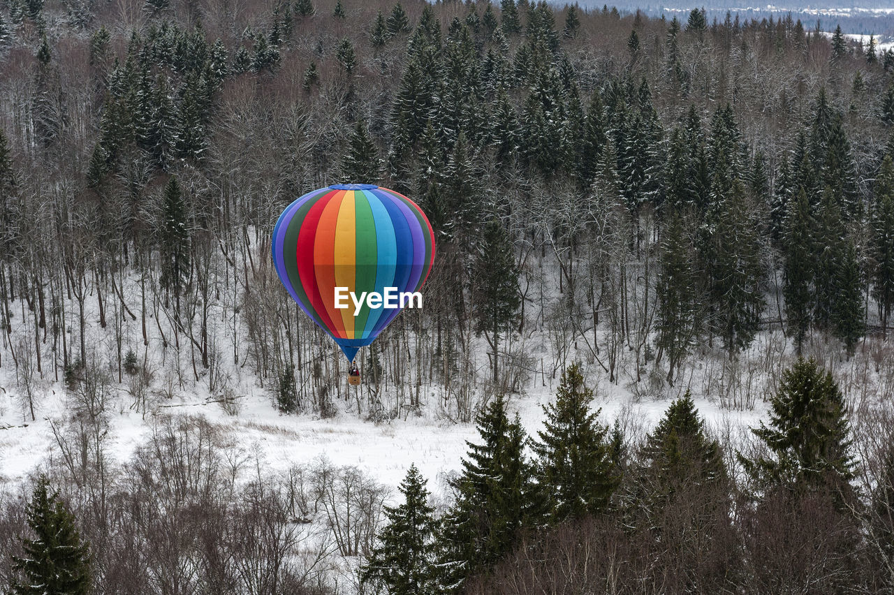tree, multi colored, mid-air, flying, plant, hot air balloon, nature, forest, balloon, transportation, air vehicle, land, day, scenics - nature, no people, beauty in nature, non-urban scene, outdoors, tranquility, helium