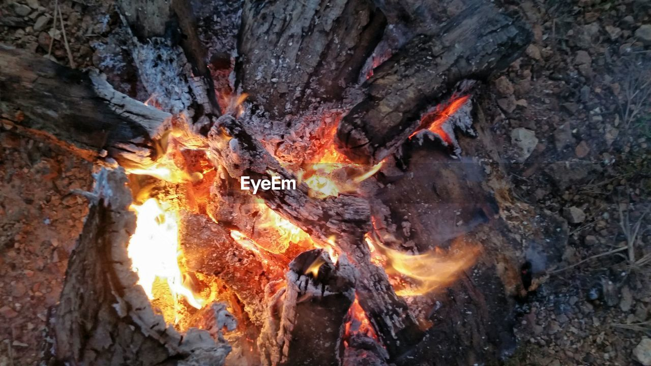 fire, burning, heat - temperature, flame, fire - natural phenomenon, log, wood, nature, wood - material, firewood, no people, glowing, outdoors, close-up, bonfire, environment, motion, ash, camping, tree, campfire