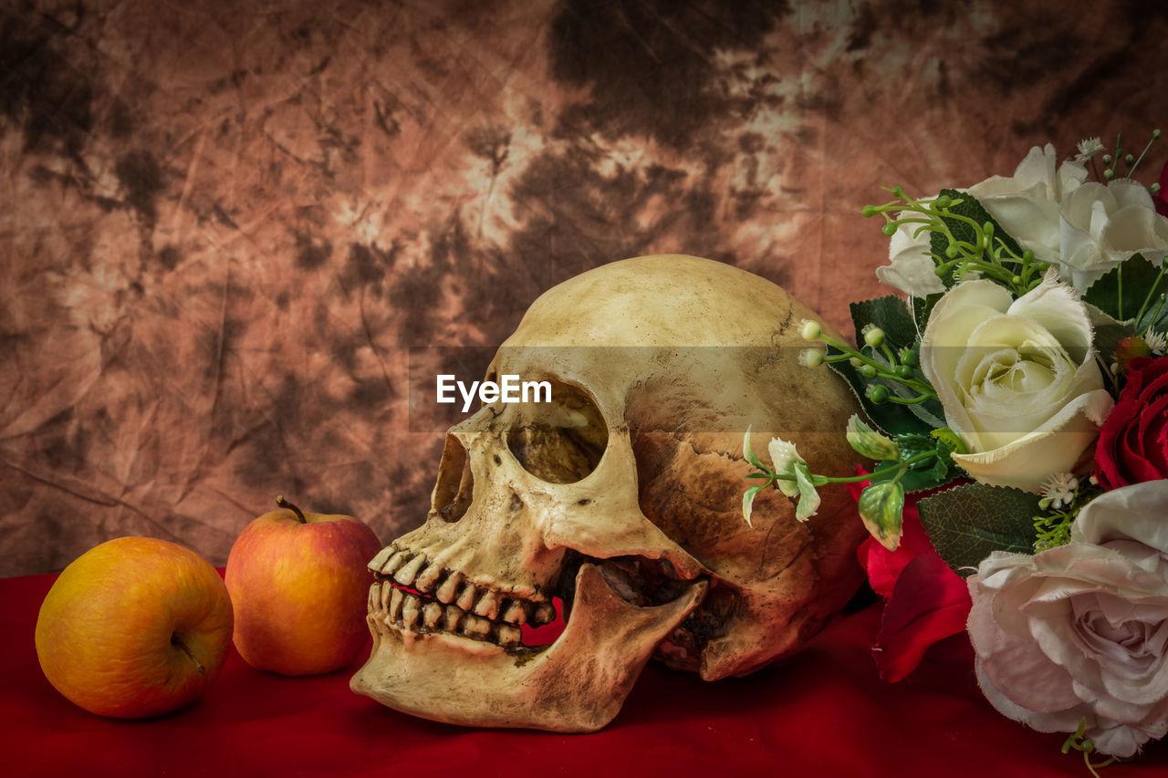 flower, bone, flowering plant, still life, freshness, indoors, human skeleton, human skull, close-up, table, plant, rose, rose - flower, food and drink, beauty in nature, nature, skull, flower arrangement, bouquet, flower head