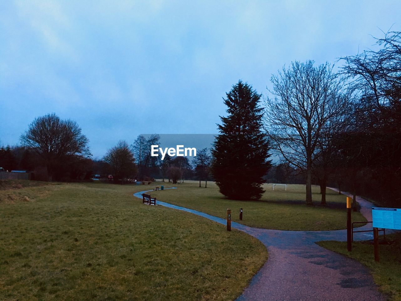 tree, plant, sky, nature, the way forward, cloud - sky, road, direction, footpath, grass, beauty in nature, transportation, day, tranquility, park, street, no people, growth, tranquil scene, landscape, outdoors