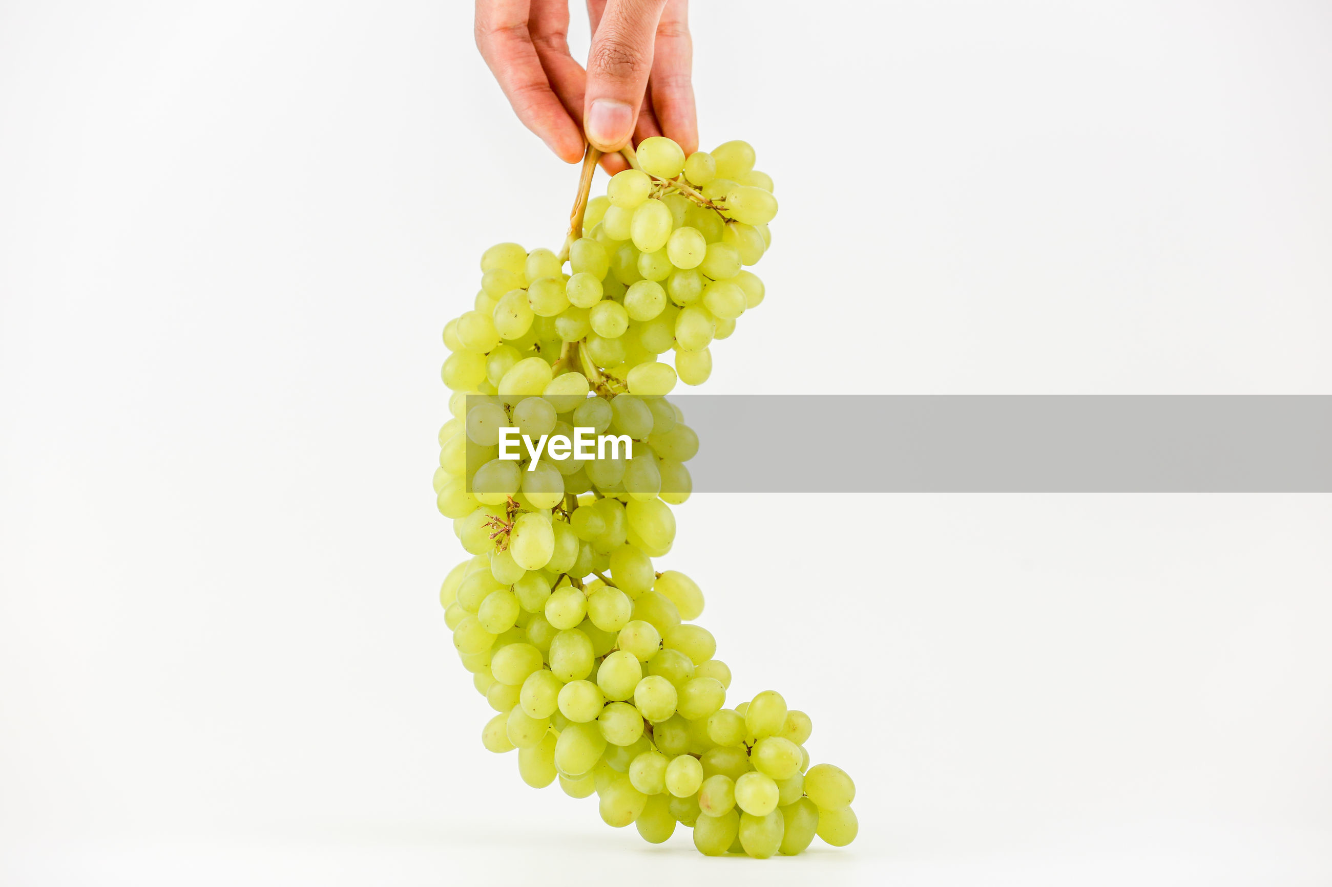 Midsection of person holding grapes against white background