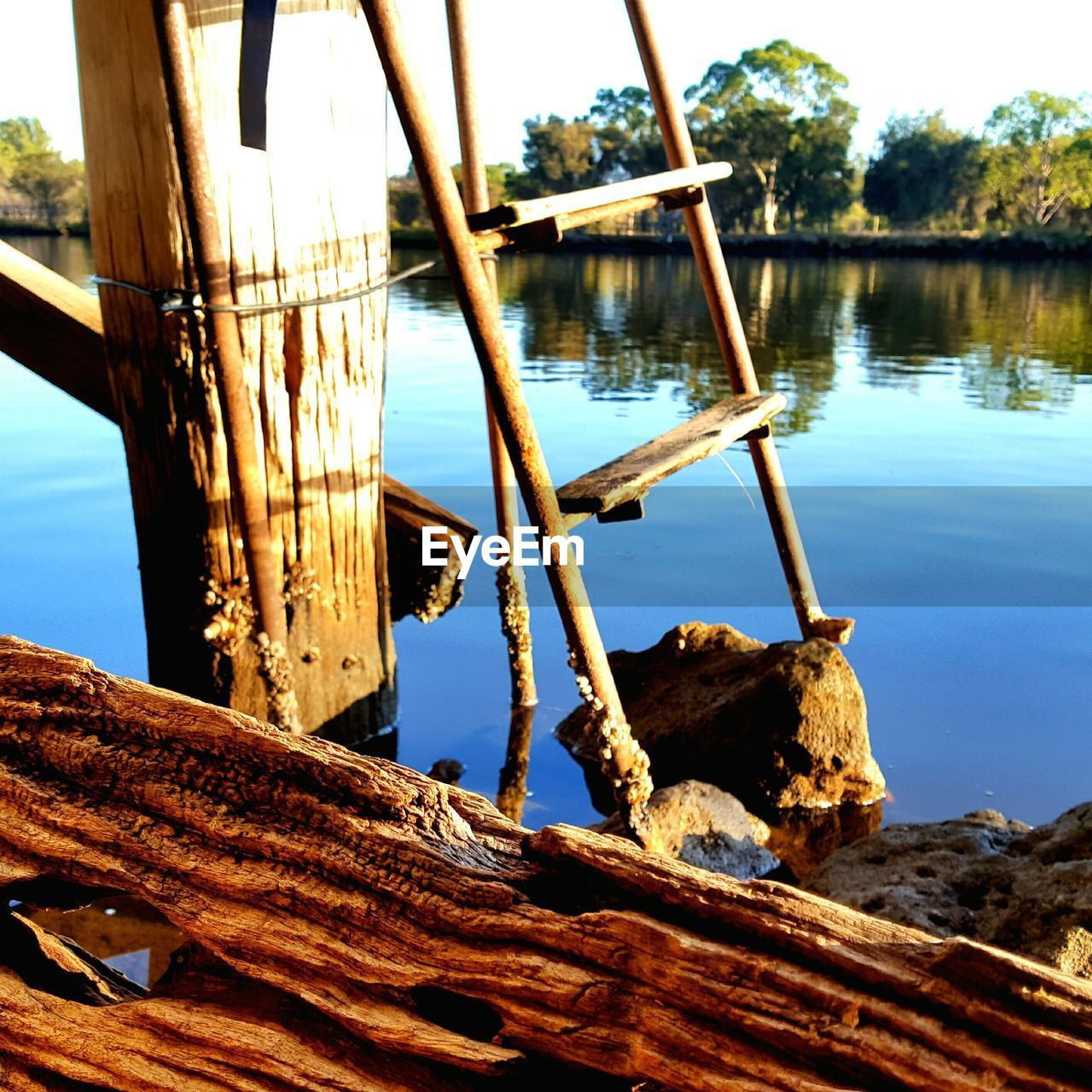 water, wood - material, no people, day, outdoors, nature, lake, nautical vessel, tree, sky, close-up