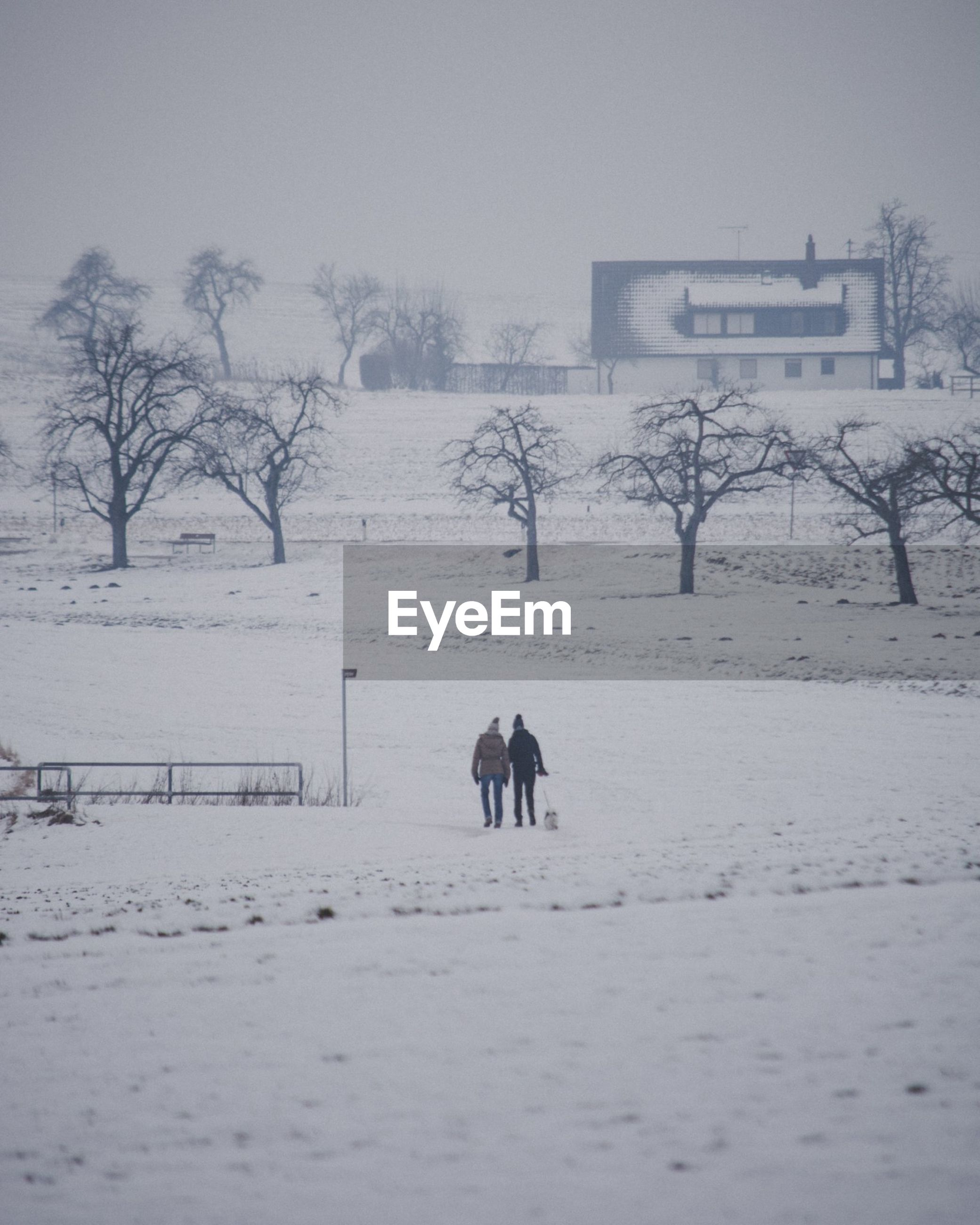 winter, cold temperature, snow, weather, nature, cold, field, outdoors, frozen, warm clothing, real people, bare tree, landscape, architecture, built structure, two people, beauty in nature, tree, togetherness, men, day, building exterior, snowing, mammal, people