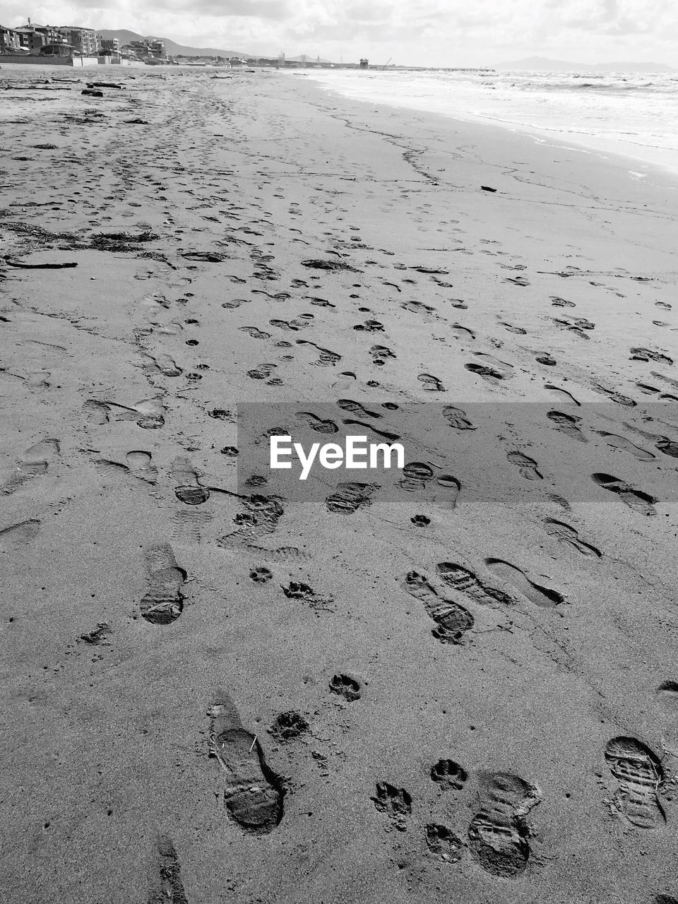 beach, sand, shore, footprint, paw print, nature, no people, outdoors, sea, day, tranquility, water, close-up, beauty in nature, sky