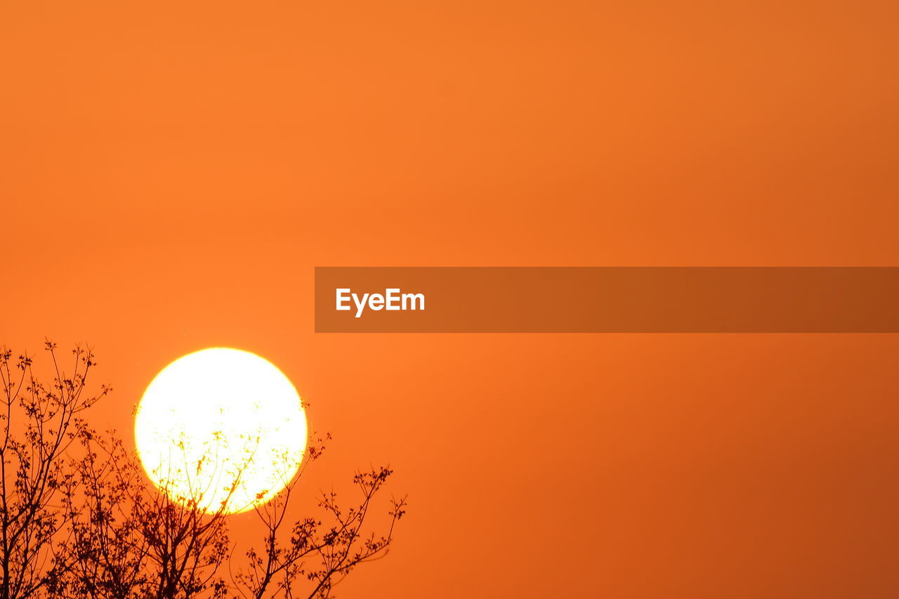 orange color, sky, sunset, beauty in nature, scenics - nature, sun, tranquility, tranquil scene, copy space, no people, geometric shape, circle, shape, idyllic, nature, clear sky, outdoors, silhouette, low angle view, plant, planetary moon