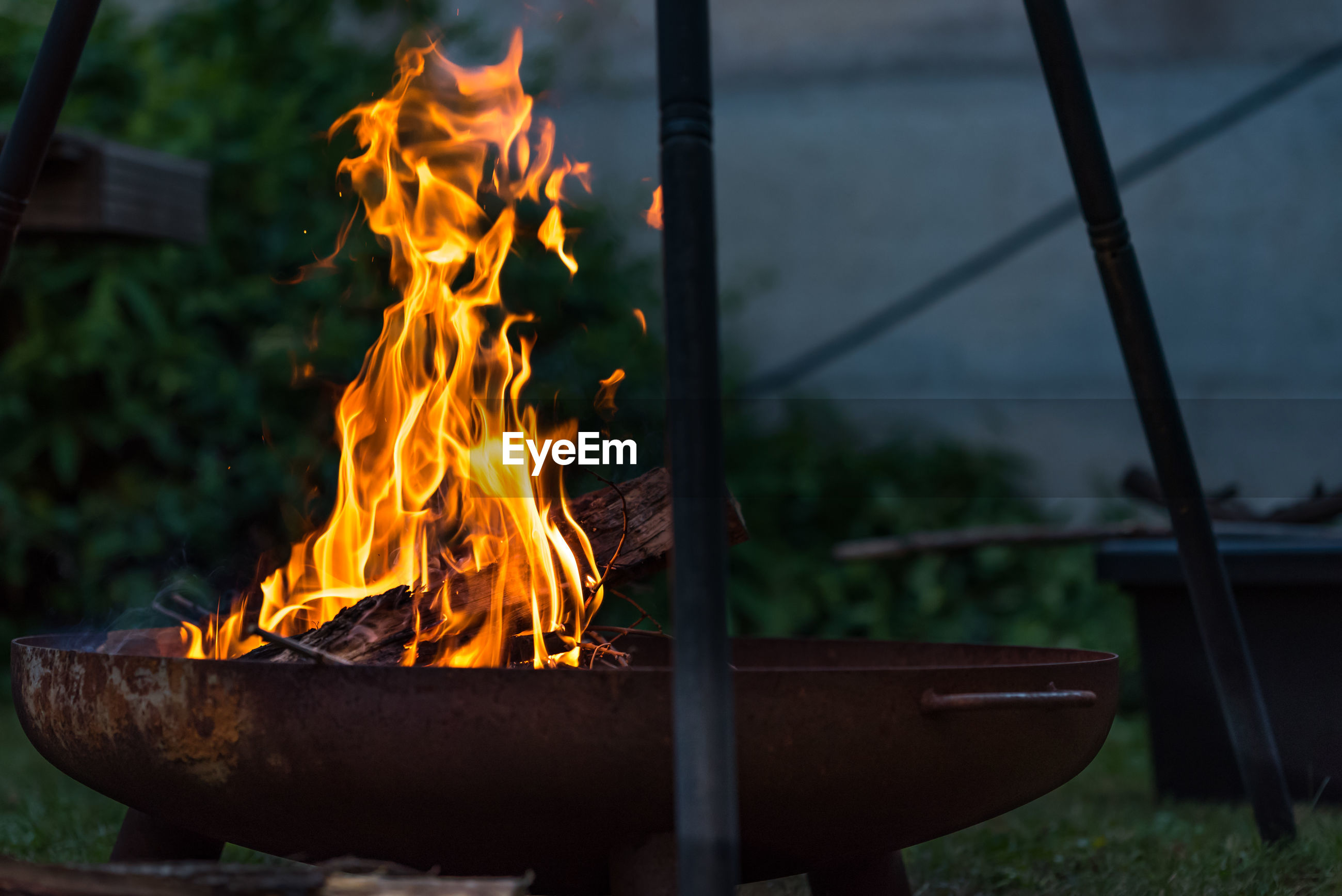 CLOSE-UP OF FIRE BURNING ON PLANT