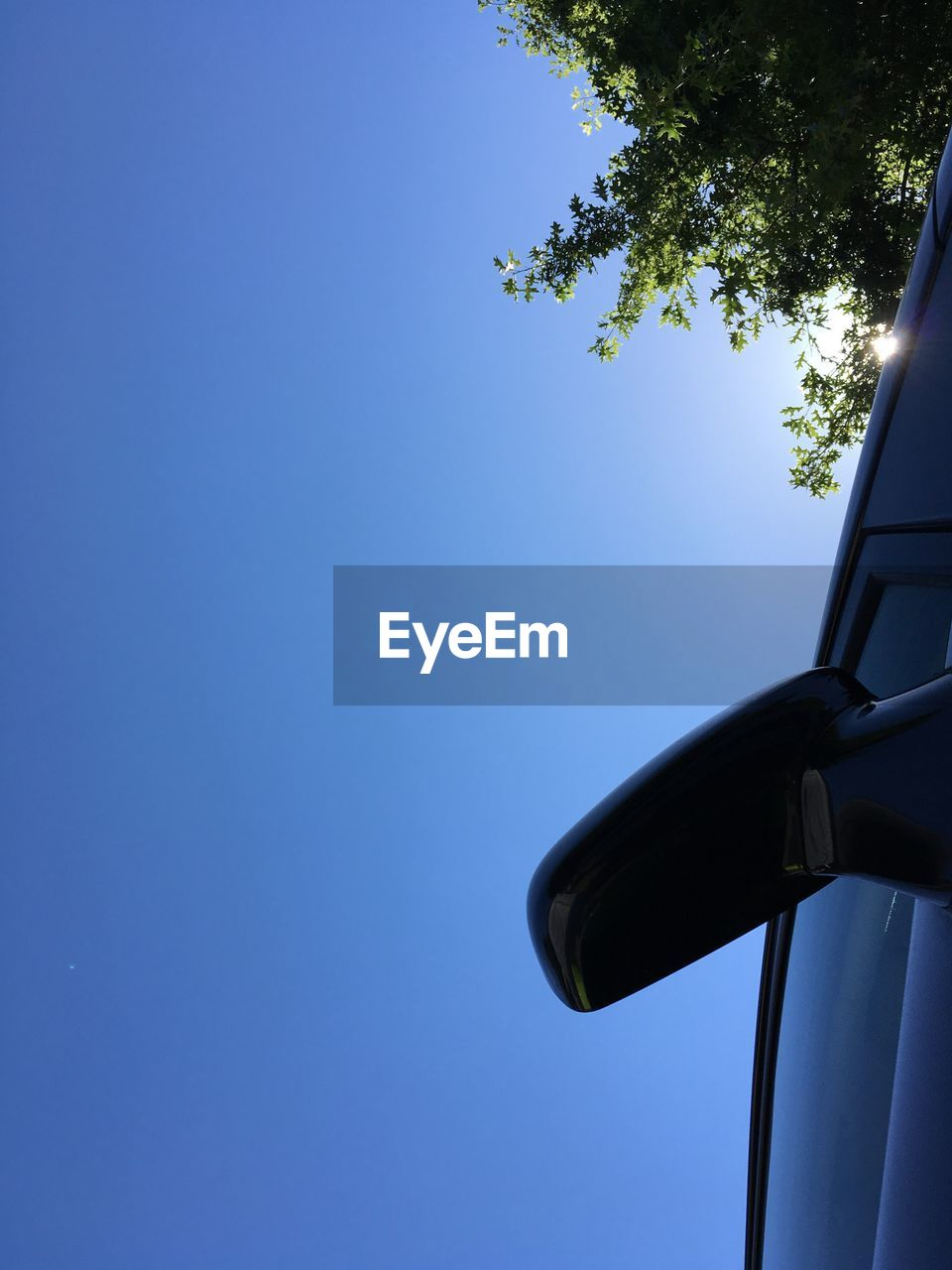 sky, blue, clear sky, low angle view, tree, nature, copy space, plant, no people, mode of transportation, day, transportation, sunlight, outdoors, land vehicle, air vehicle, motion, car, close-up, on the move