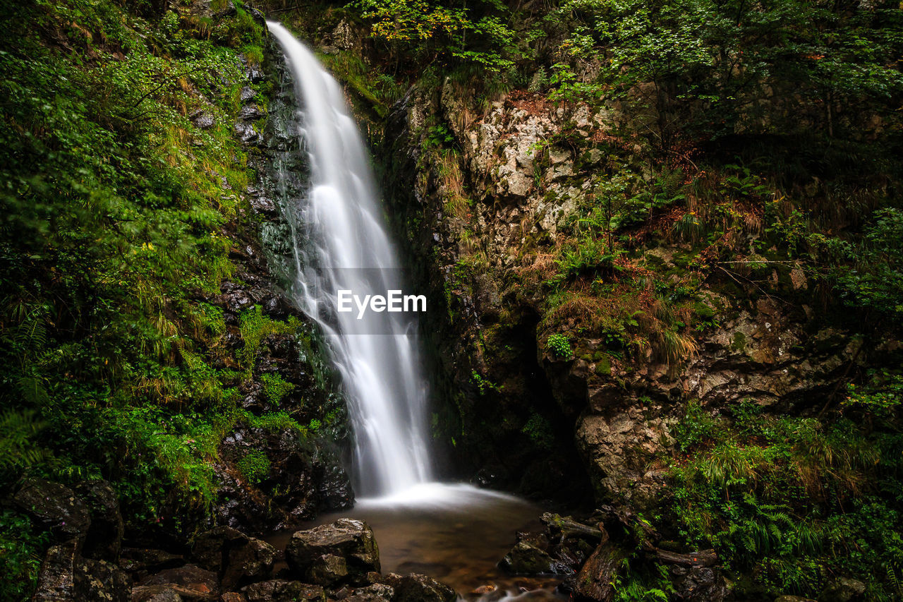 scenics - nature, motion, blurred motion, forest, long exposure, water, flowing water, waterfall, land, tree, nature, beauty in nature, rock, environment, no people, plant, rock - object, solid, rock formation, power in nature, outdoors, flowing, rainforest, falling water