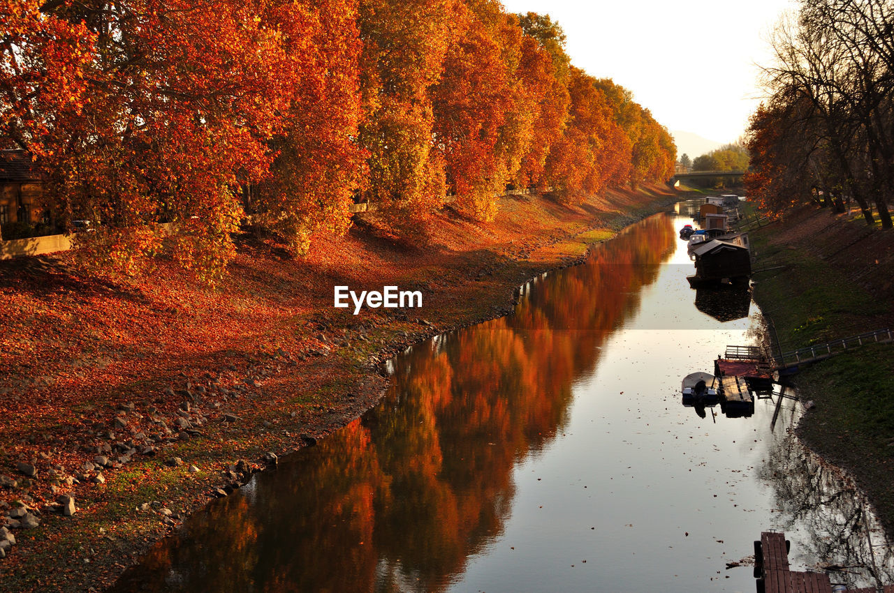 Canal Amidst Trees Against Sky During Autumn