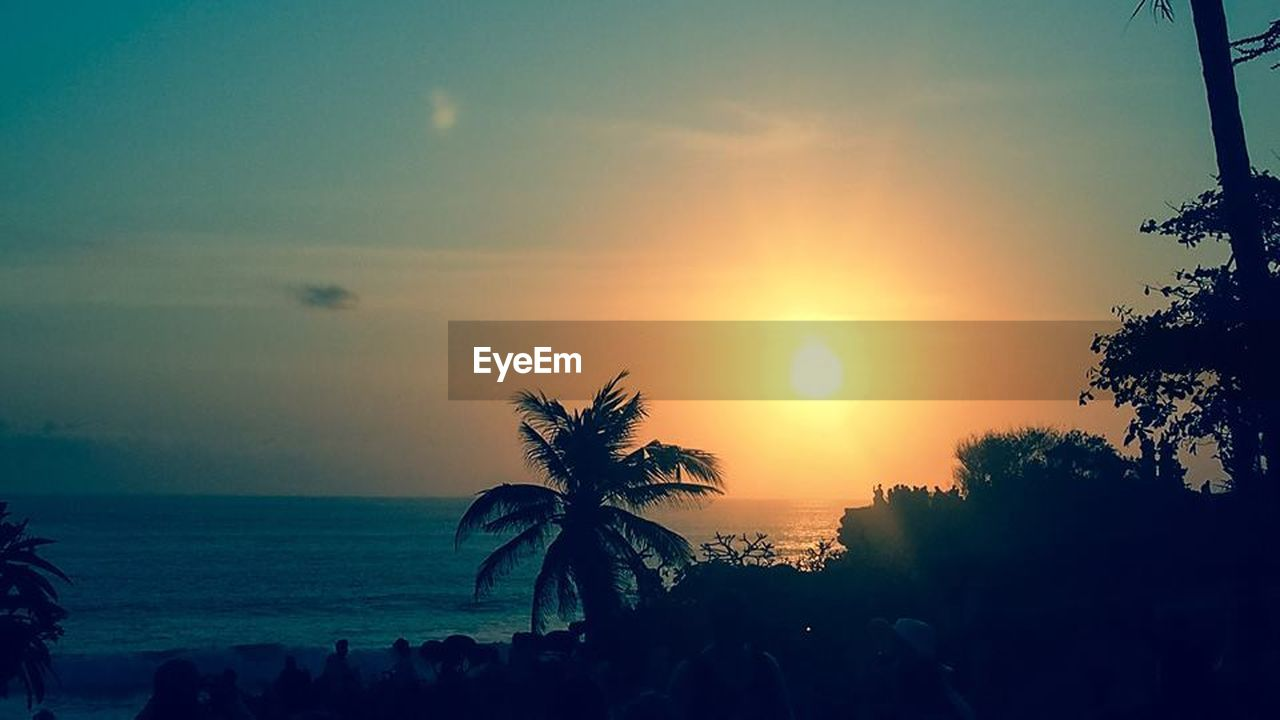 palm tree, tree, sunset, scenics, sun, sea, tranquility, beauty in nature, sky, silhouette, beach, nature, tranquil scene, no people, outdoors, growth, sunlight, travel destinations, vacations, landscape, water, horizon over water, day