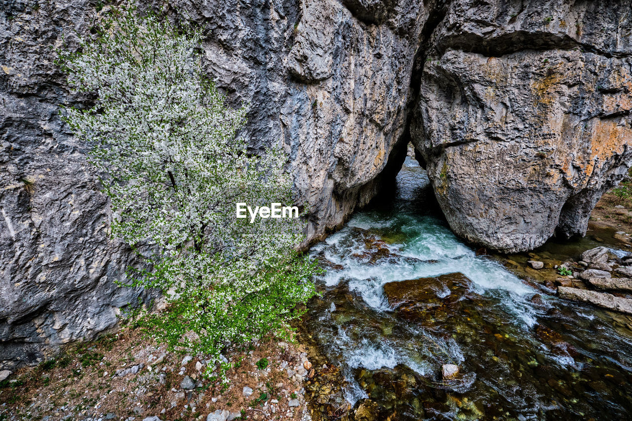 rock, rock - object, solid, nature, water, no people, rock formation, textured, day, beauty in nature, tree, plant, growth, land, outdoors, tranquility, moss, rough, motion, flowing, flowing water, formation, eroded