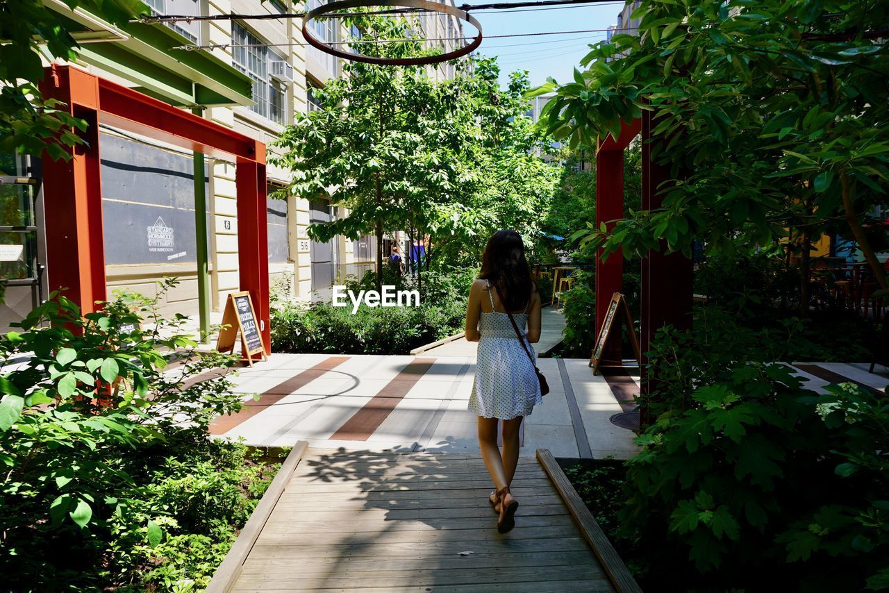 plant, tree, one person, real people, architecture, full length, women, rear view, nature, lifestyles, built structure, building exterior, day, adult, leisure activity, growth, walking, outdoors, building