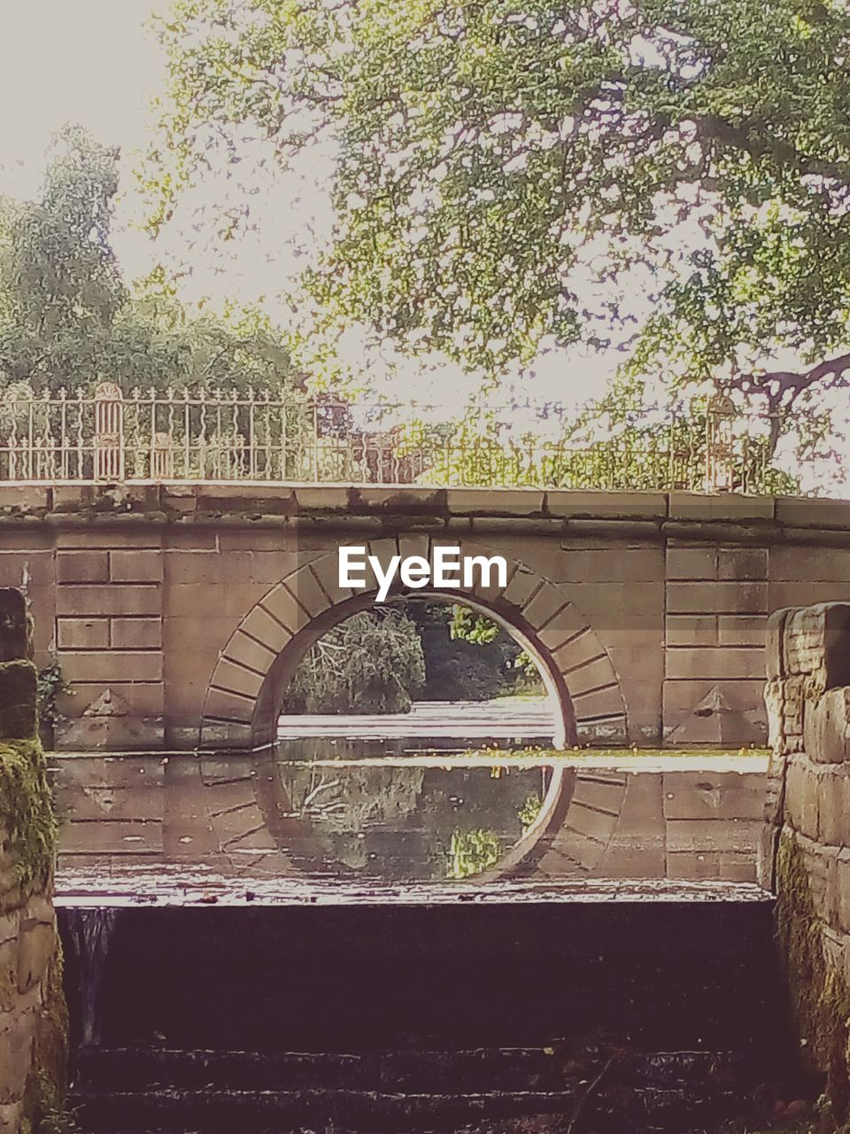 tree, architecture, built structure, day, no people, bridge - man made structure, outdoors, water, nature, sky
